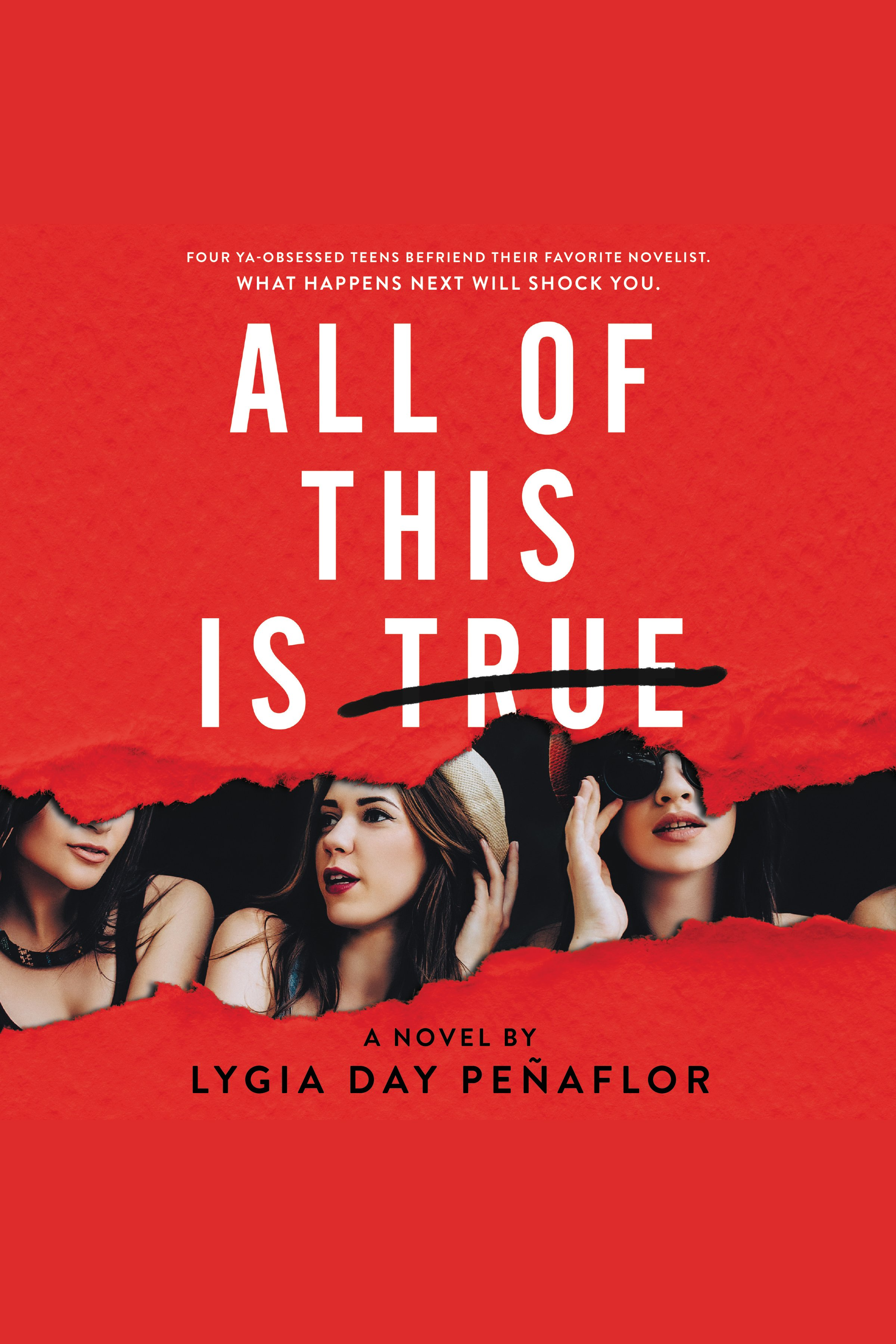 Cover Image of All of This Is True: A Novel