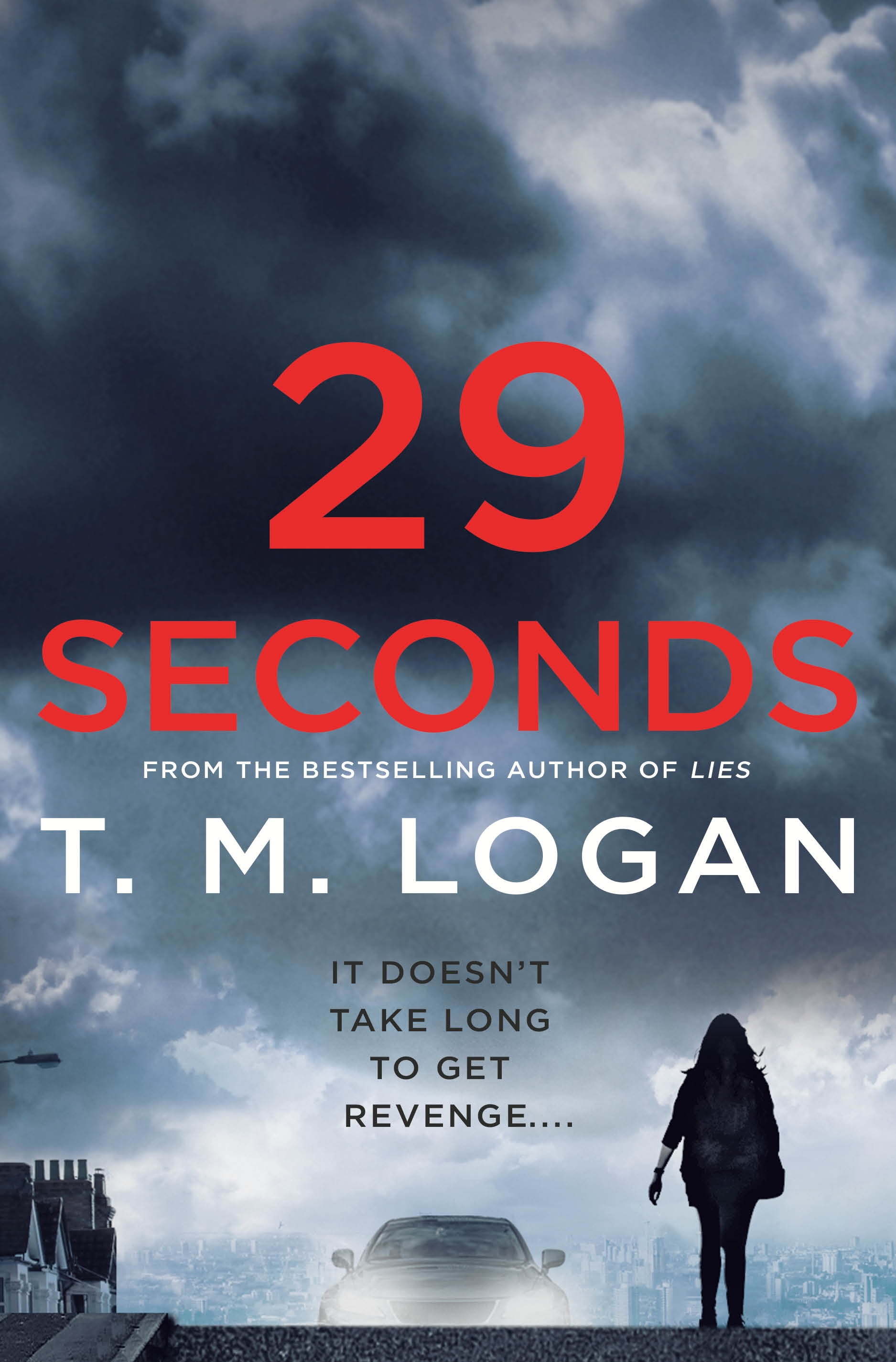29 Seconds A Novel