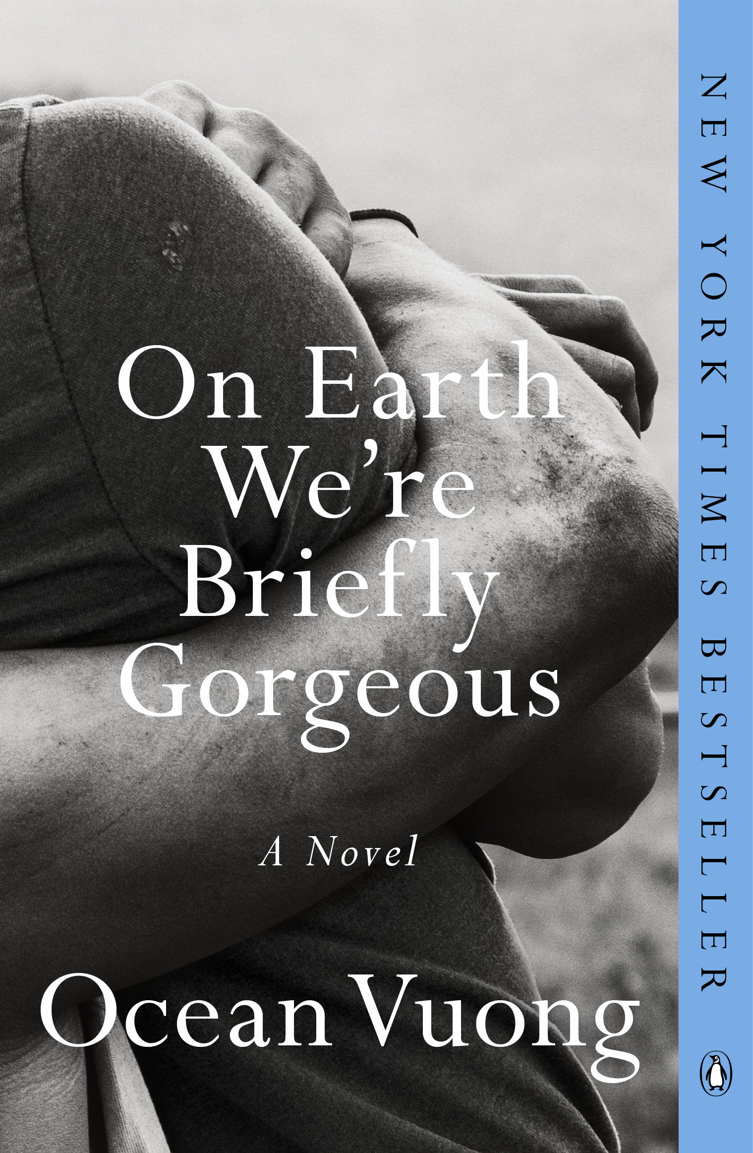 Cover image for On Earth We're Briefly Gorgeous [electronic resource] : A Novel