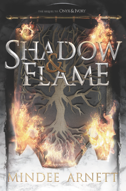 Shadow & flame cover image