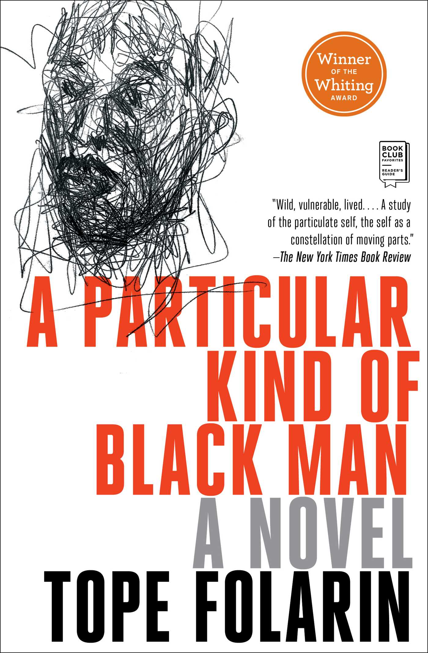 A Particular Kind of Black Man [electronic resource] : A Novel