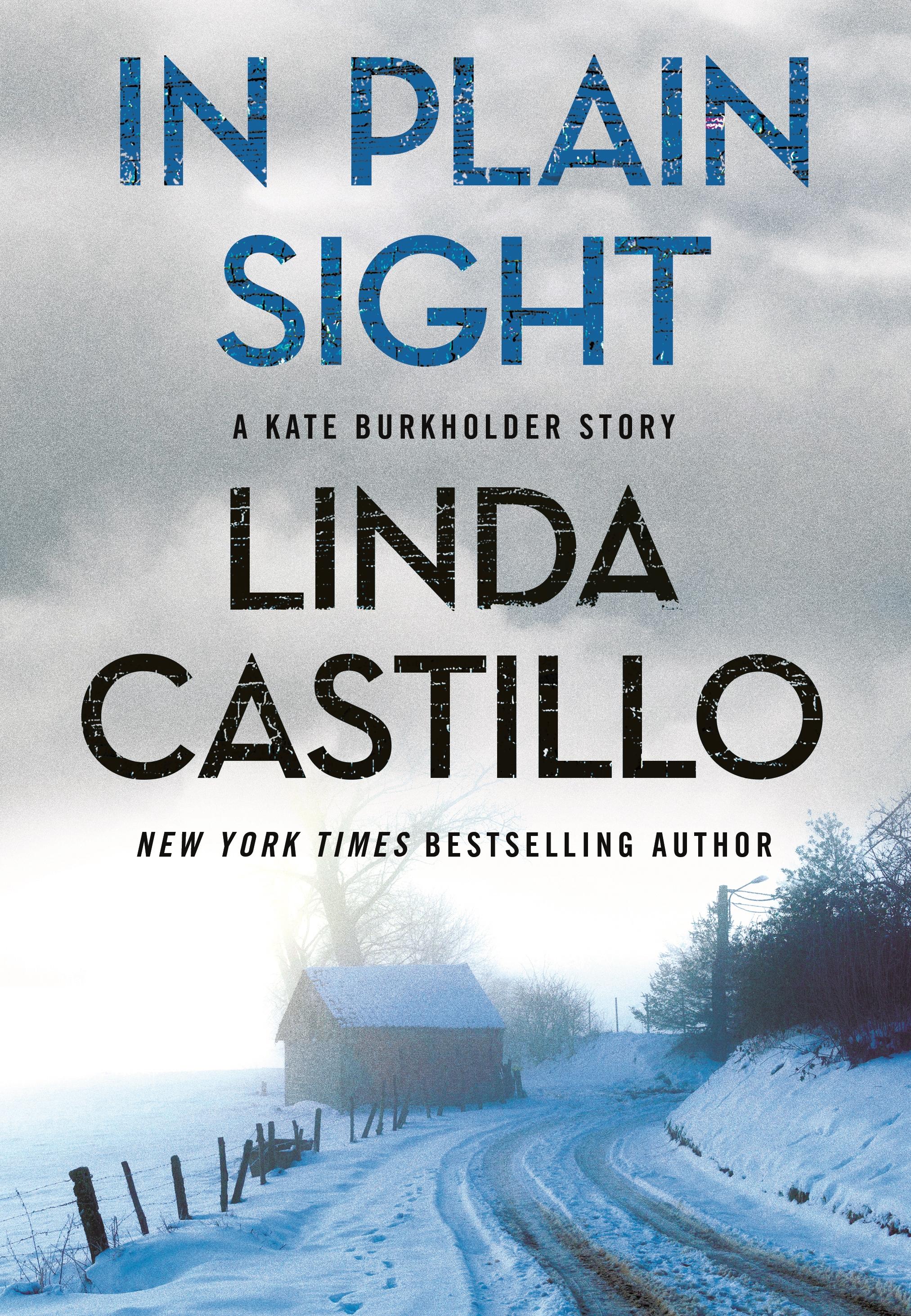 In Plain Sight A Kate Burkholder Short Mystery cover image