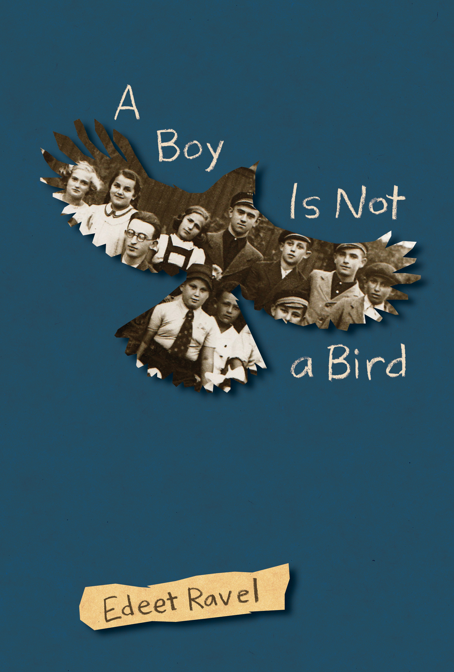 Cover Image of A Boy Is Not a Bird