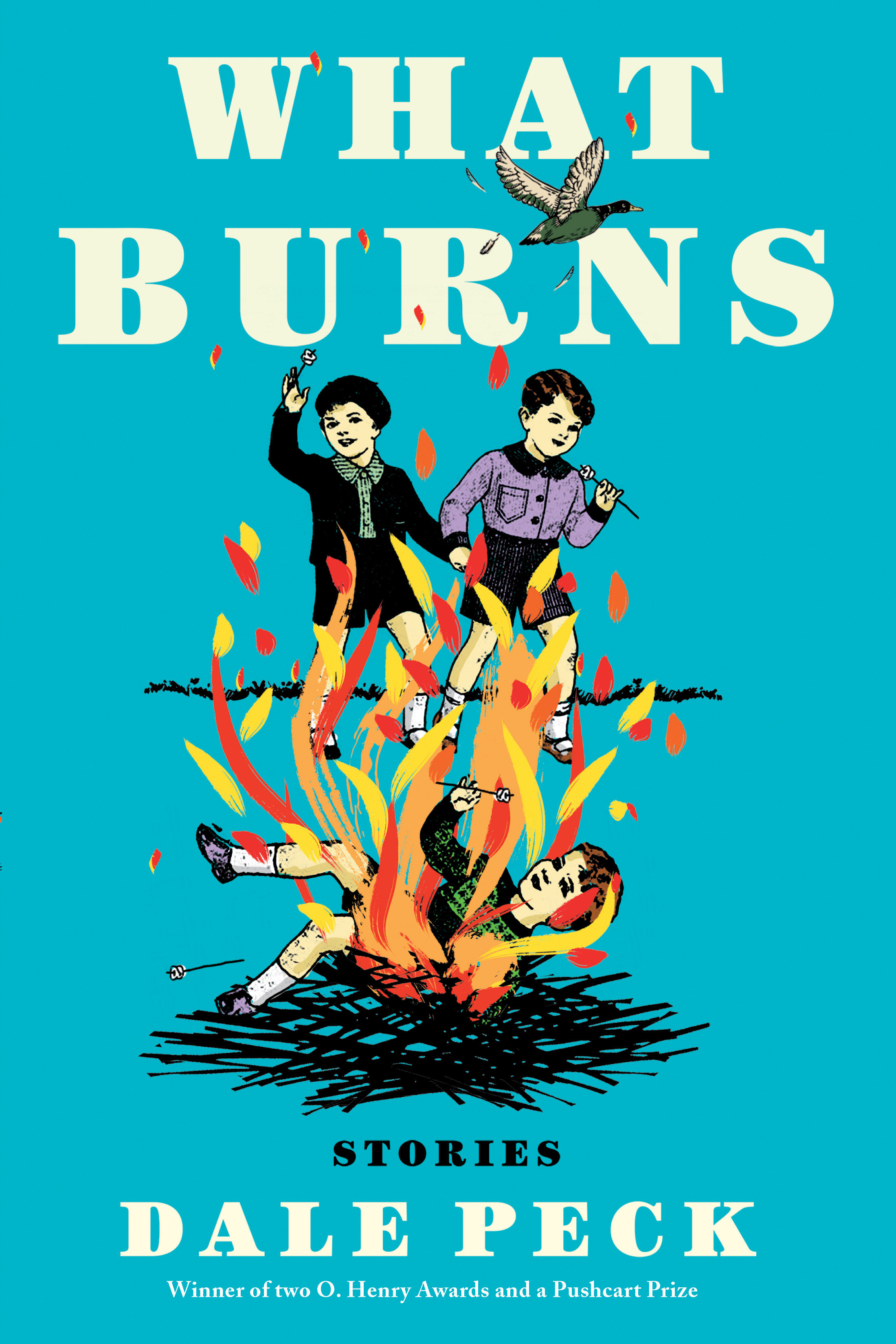 What burns [electronic resource (downloadable eBook)] : stories