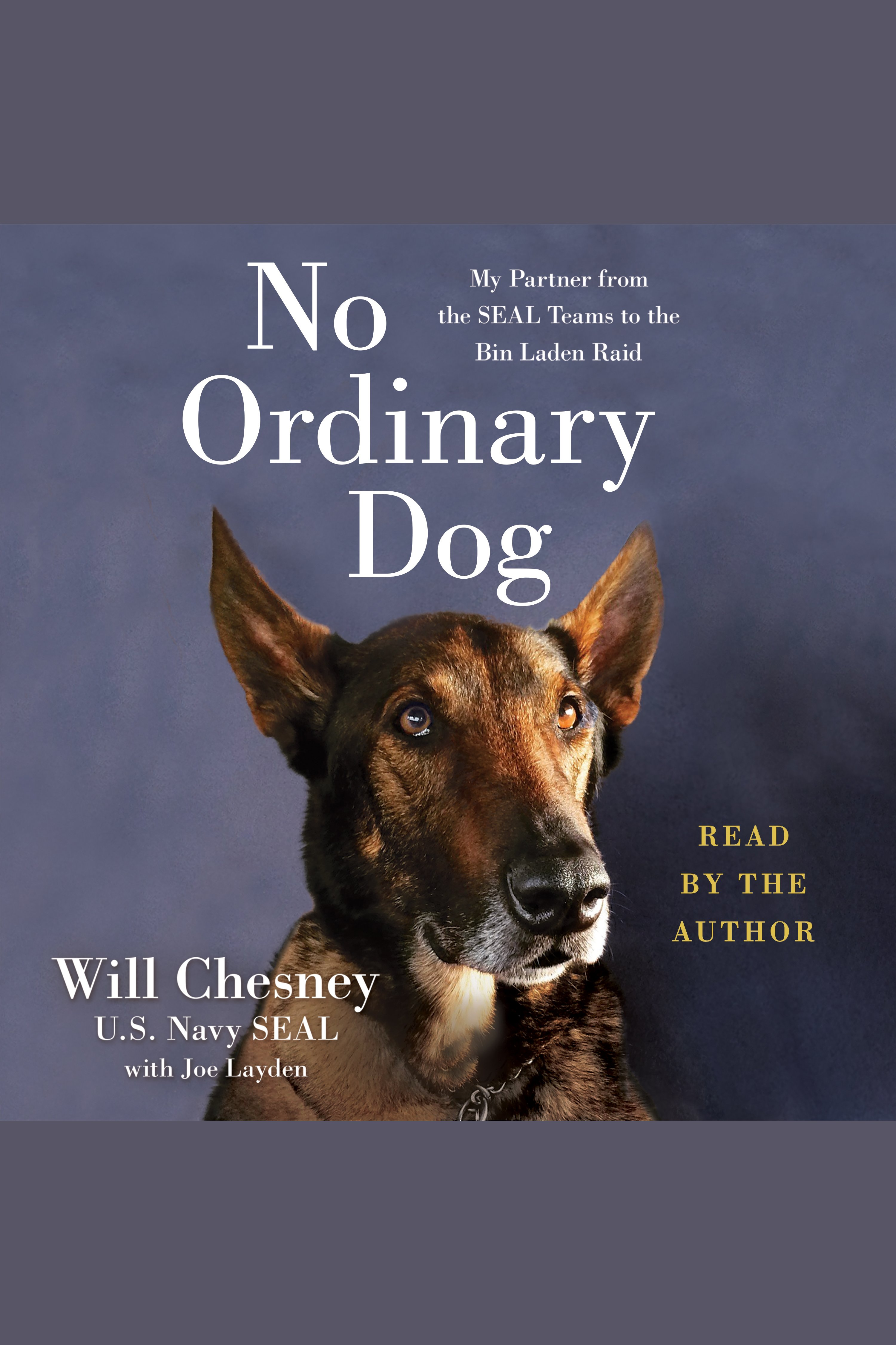 No Ordinary Dog [electronic resource] : My Partner from the SEAL Teams to the Bin Laden Raid