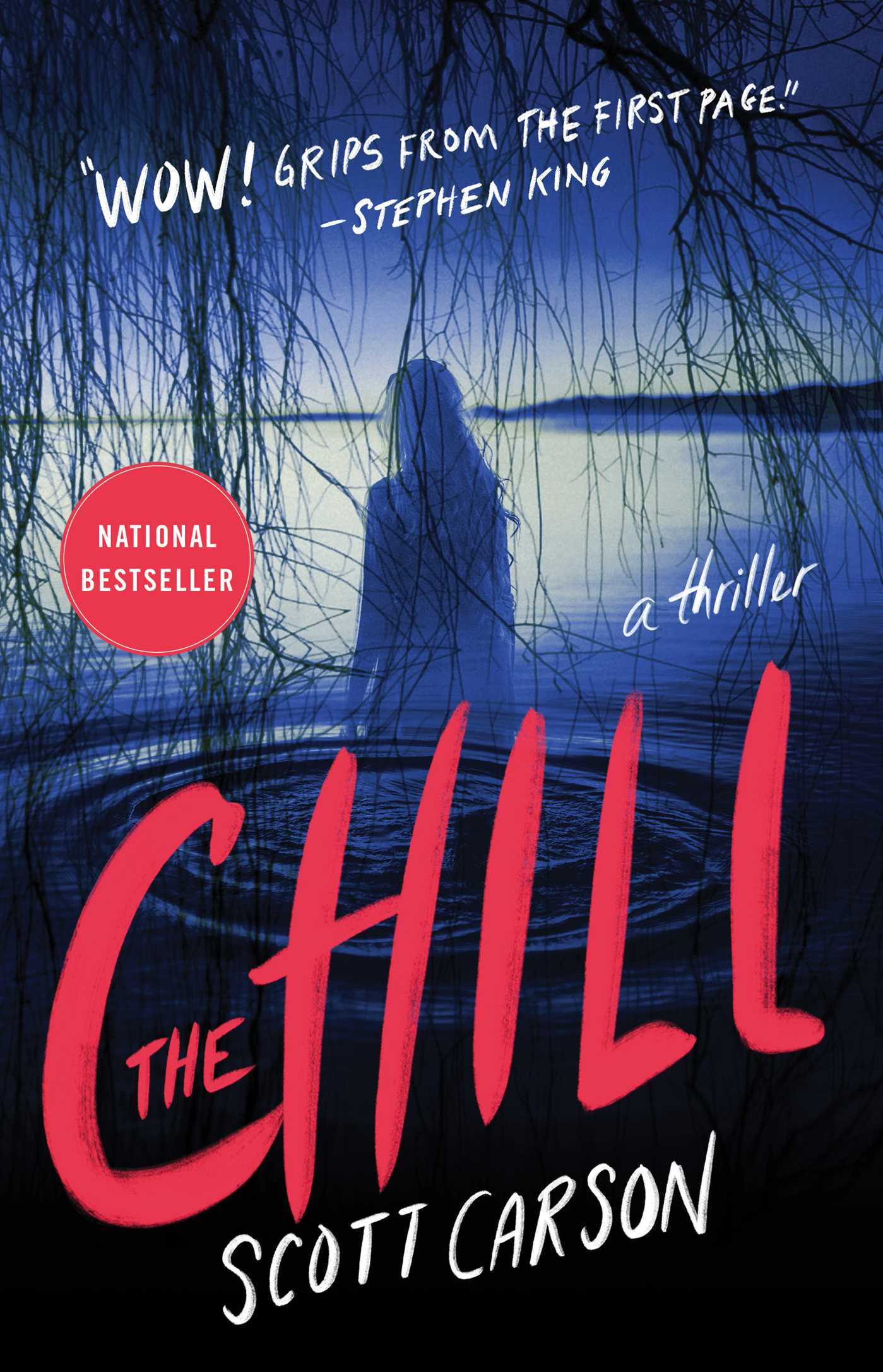 Cover image for The Chill [electronic resource] : A Novel