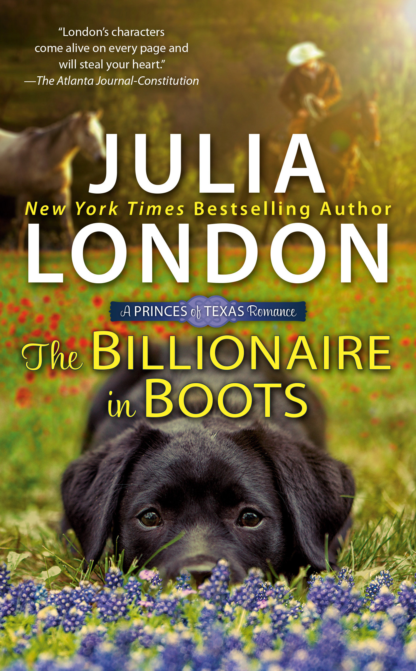 The Billionaire in Boots [electronic resource]