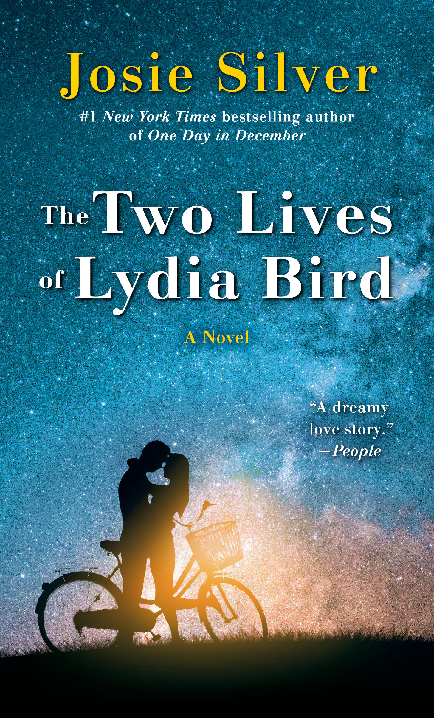 The Two Lives of Lydia Bird [electronic resource] : A Novel