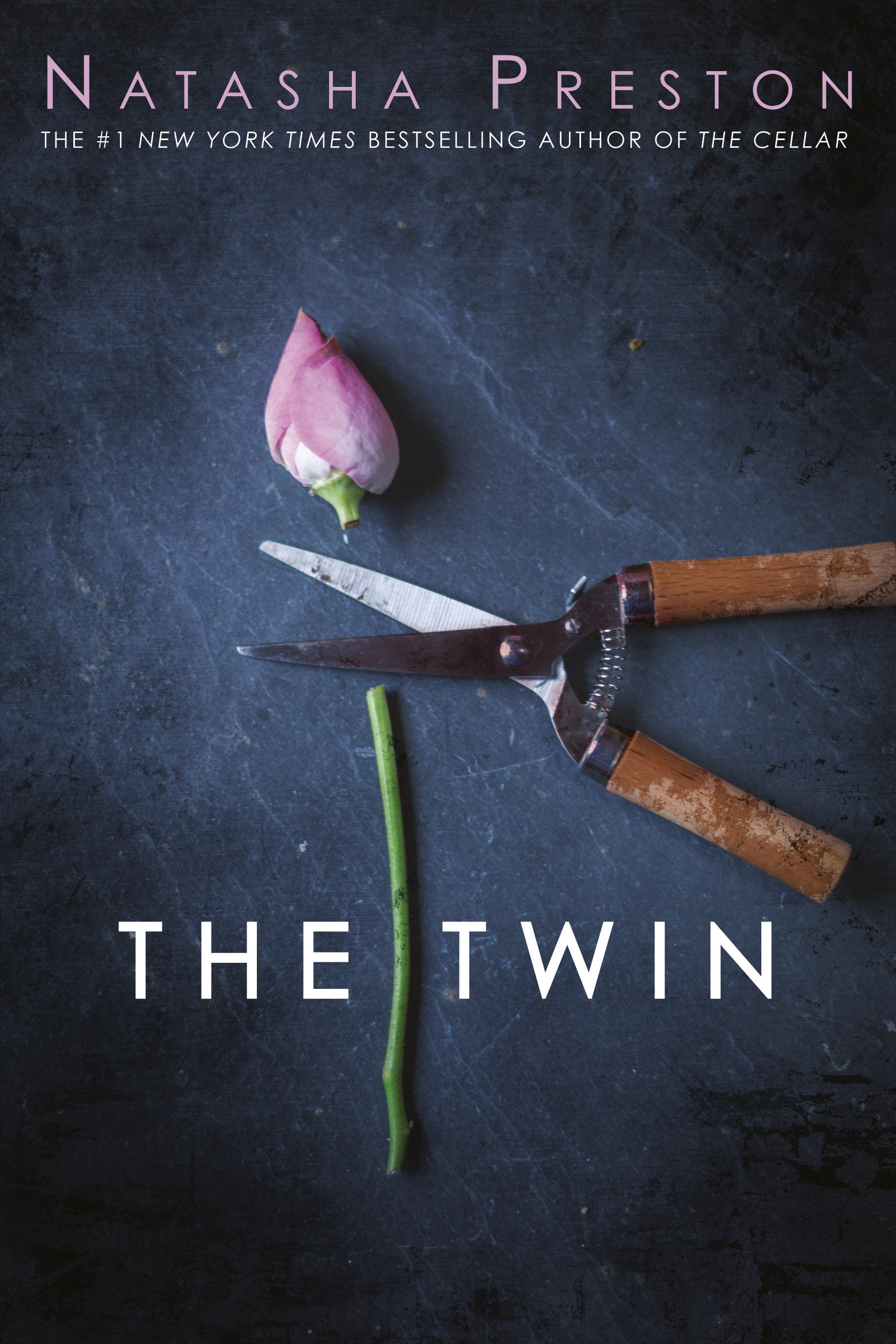 The twin cover image