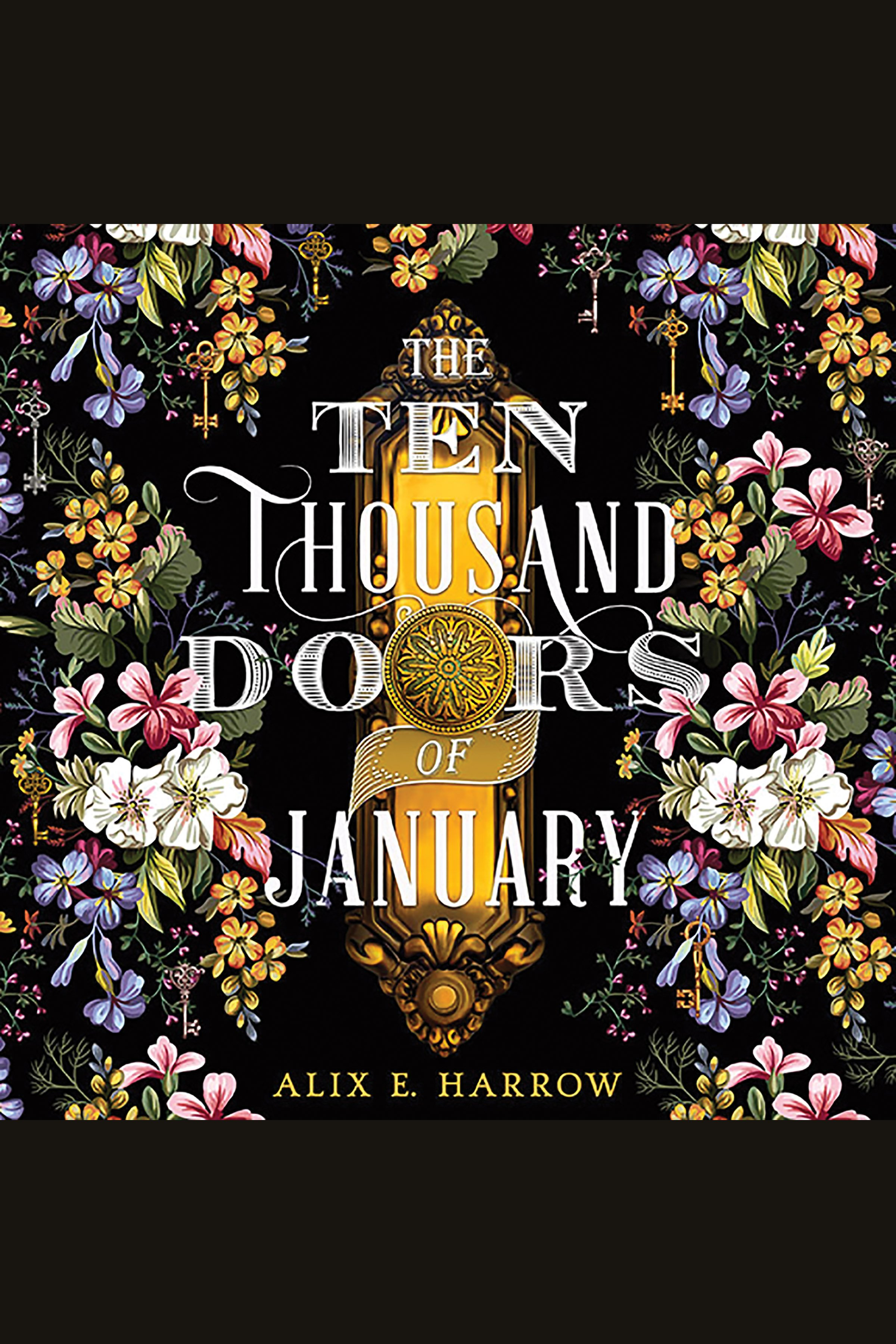 Ten Thousand Doors of January, The [electronic resource]