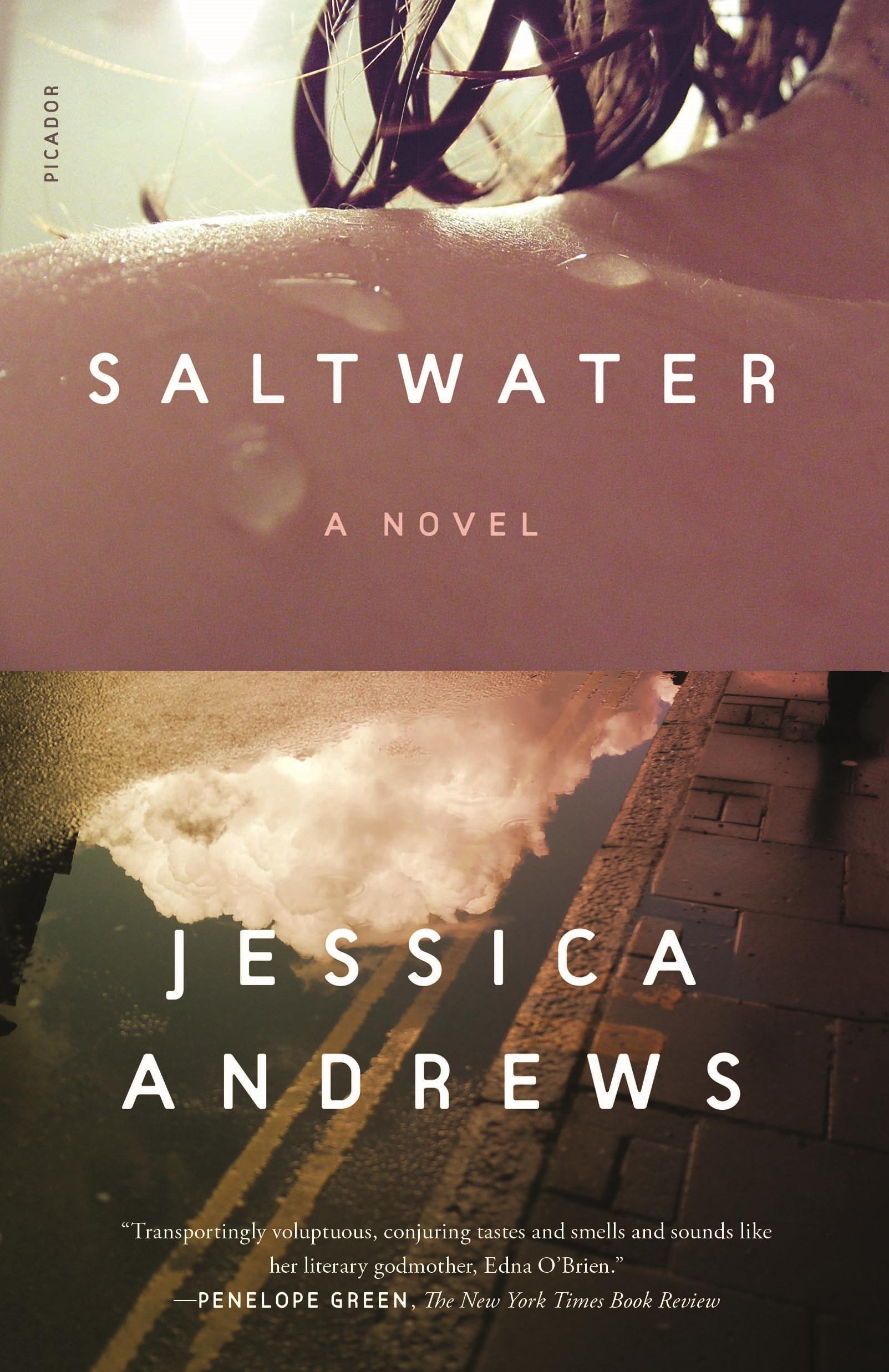 Saltwater A Novel