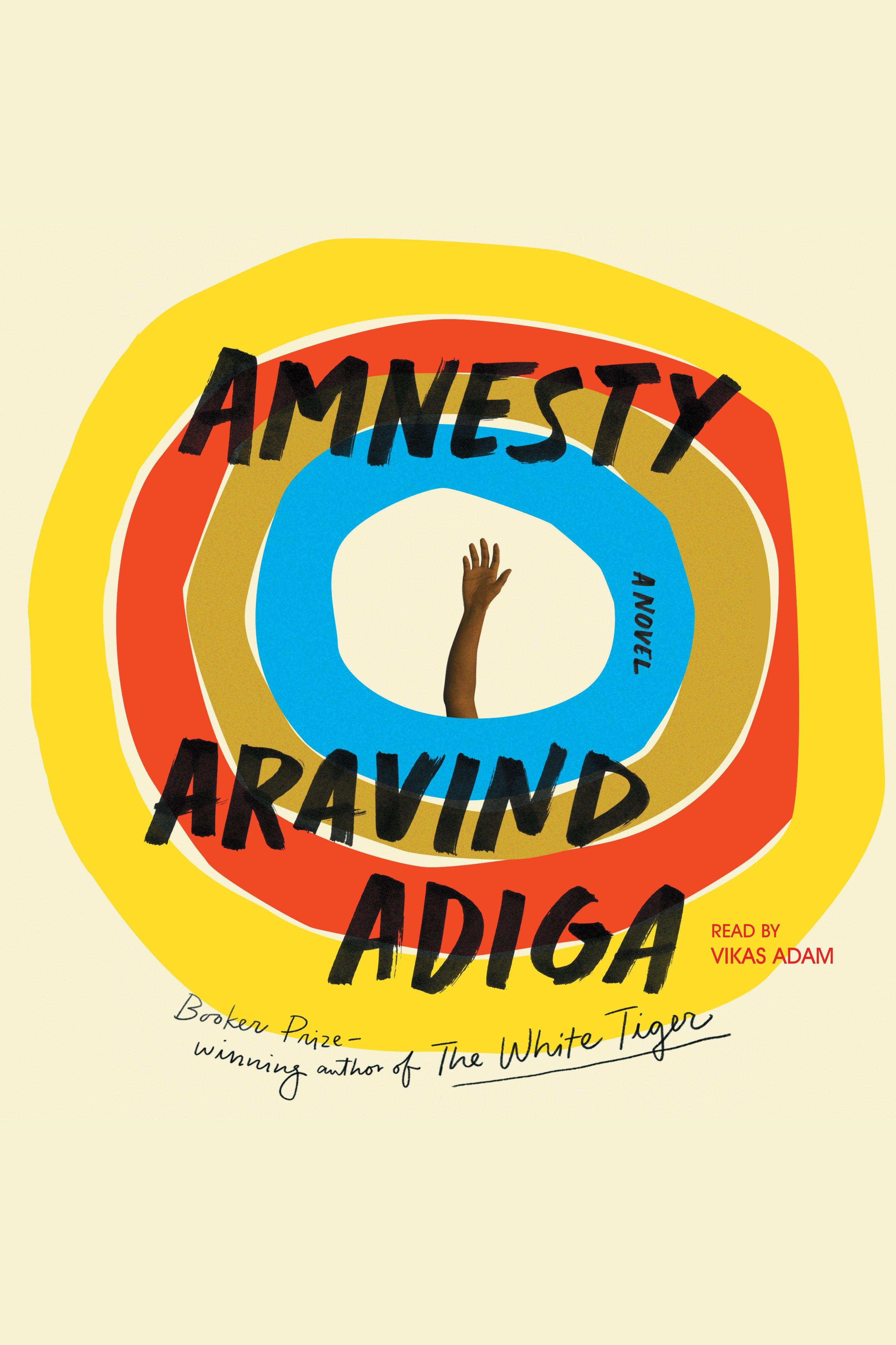 Amnesty A Novel
