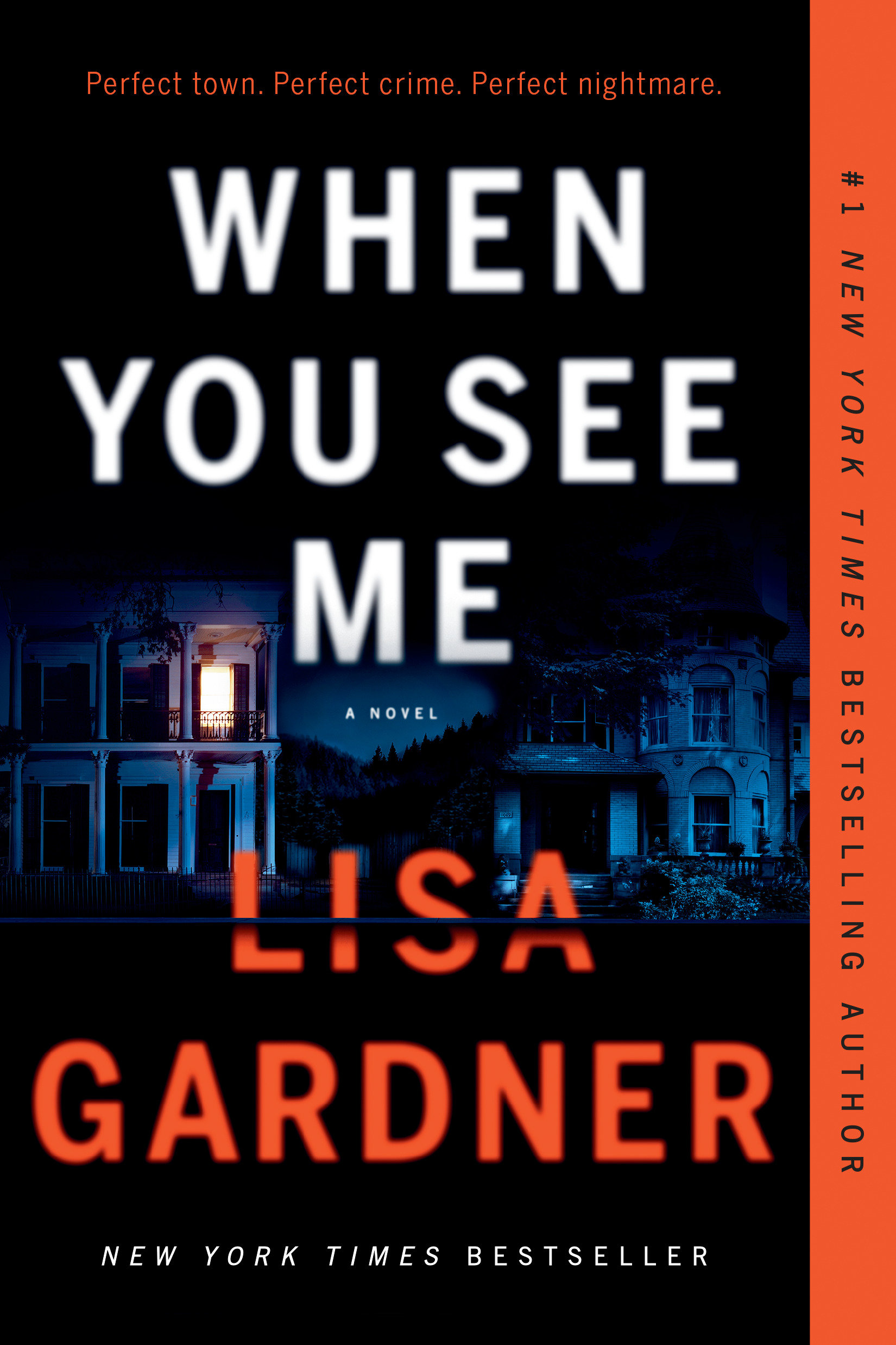 When You See Me [electronic resource] : A Novel