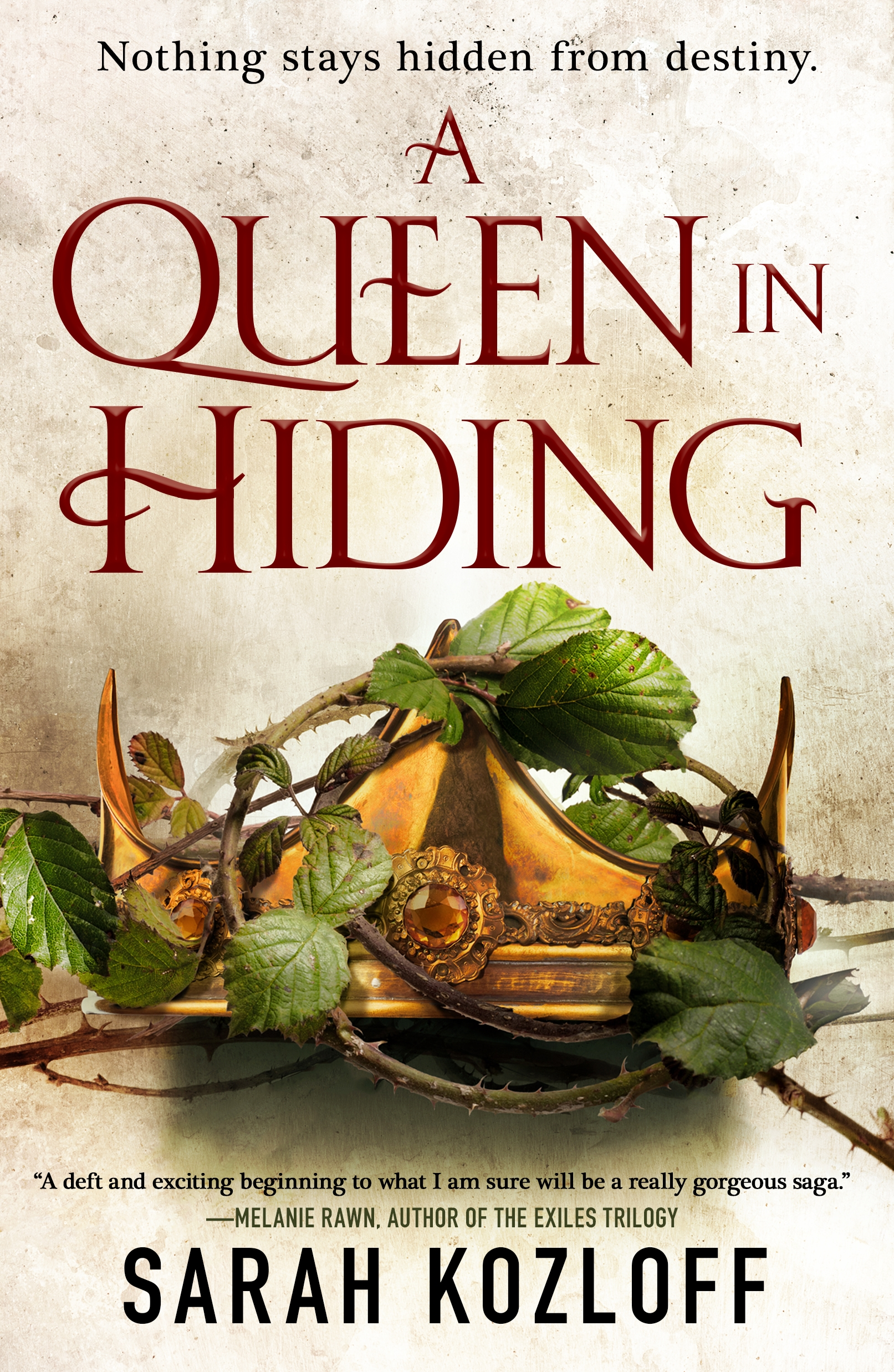 A Queen in Hiding cover image