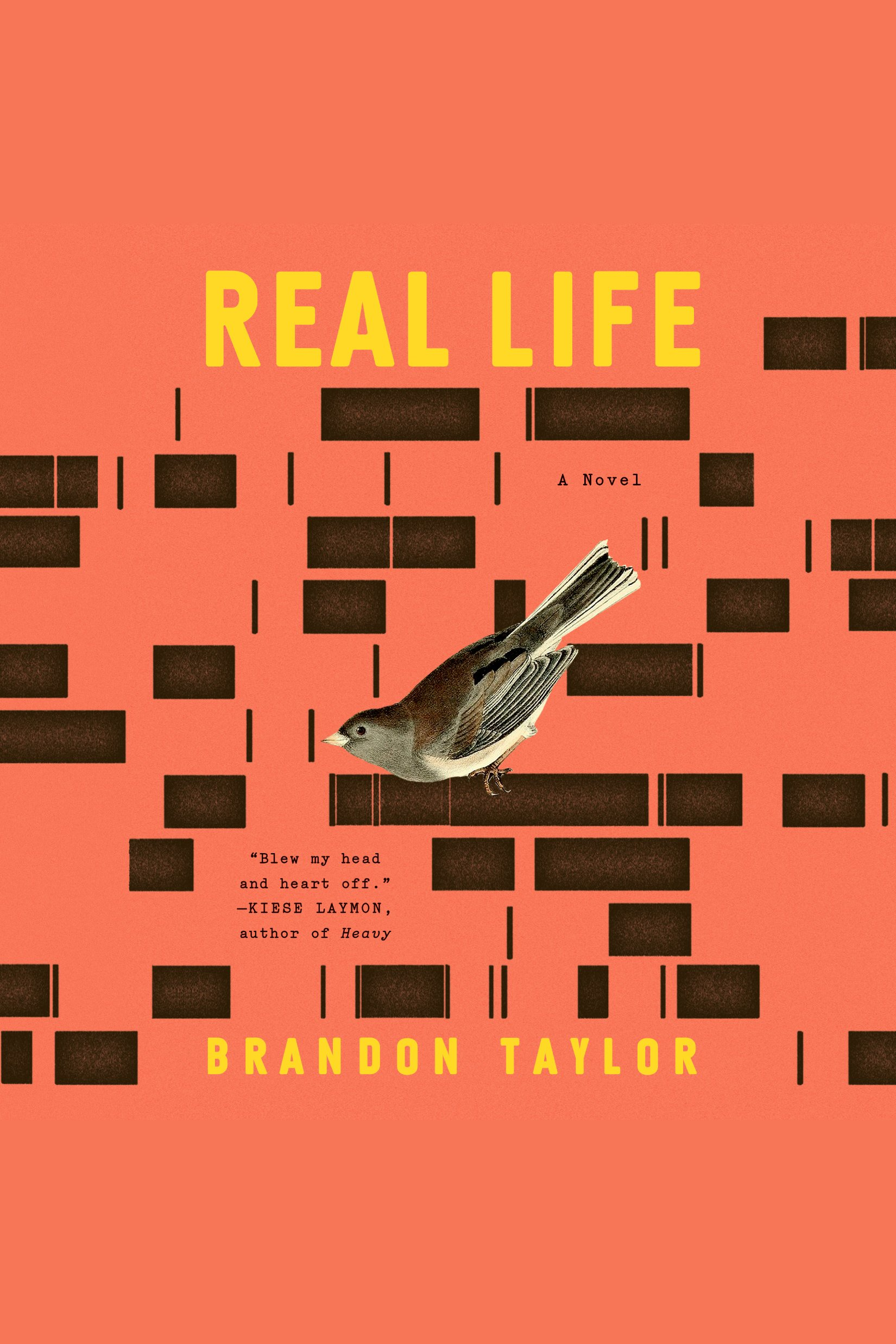 Real Life [electronic resource] : A Novel