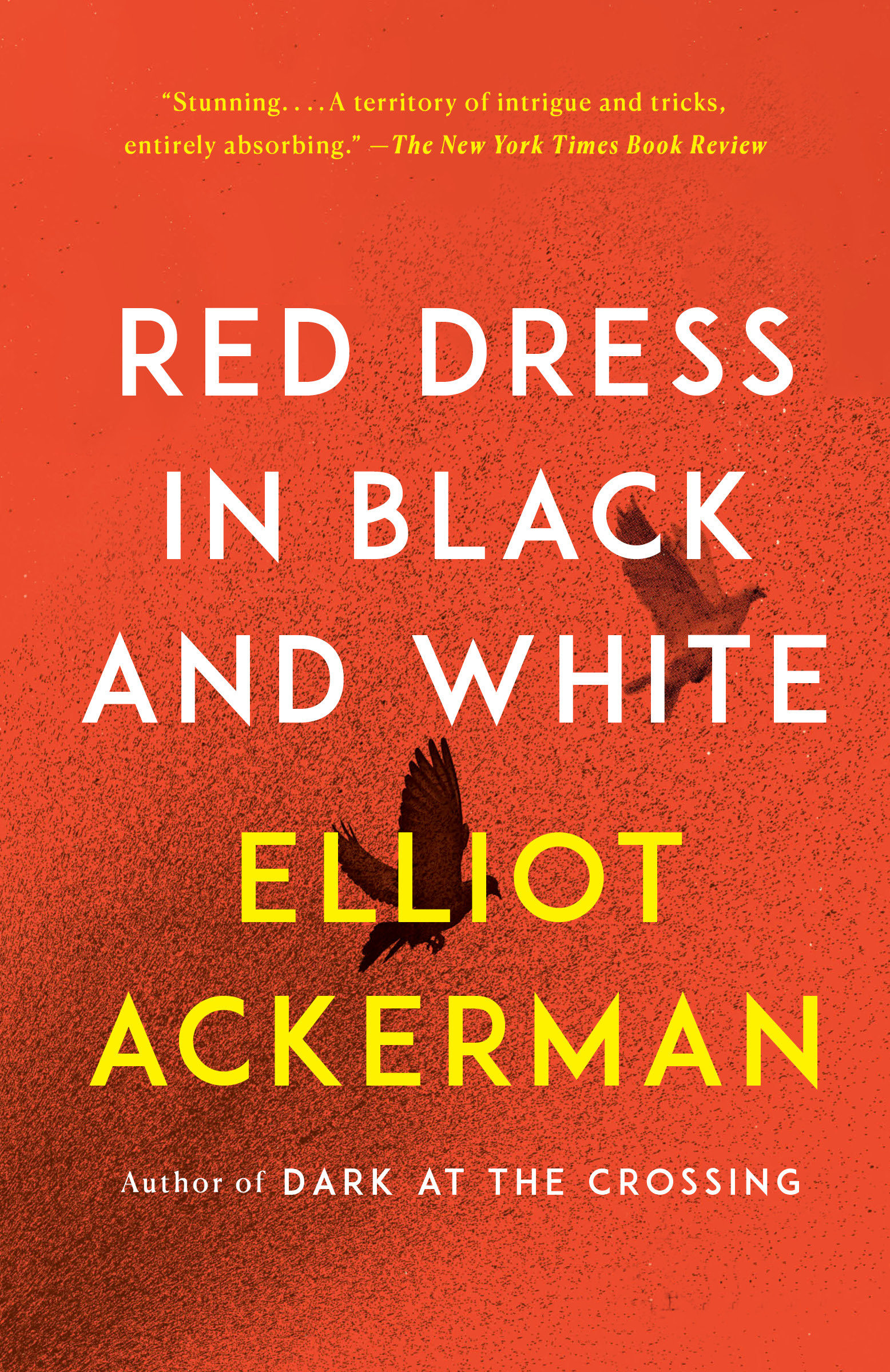 Red Dress in Black and White A novel