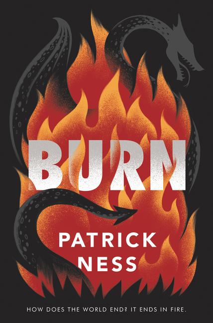 Burn [electronic resource (downloadable eBook)]
