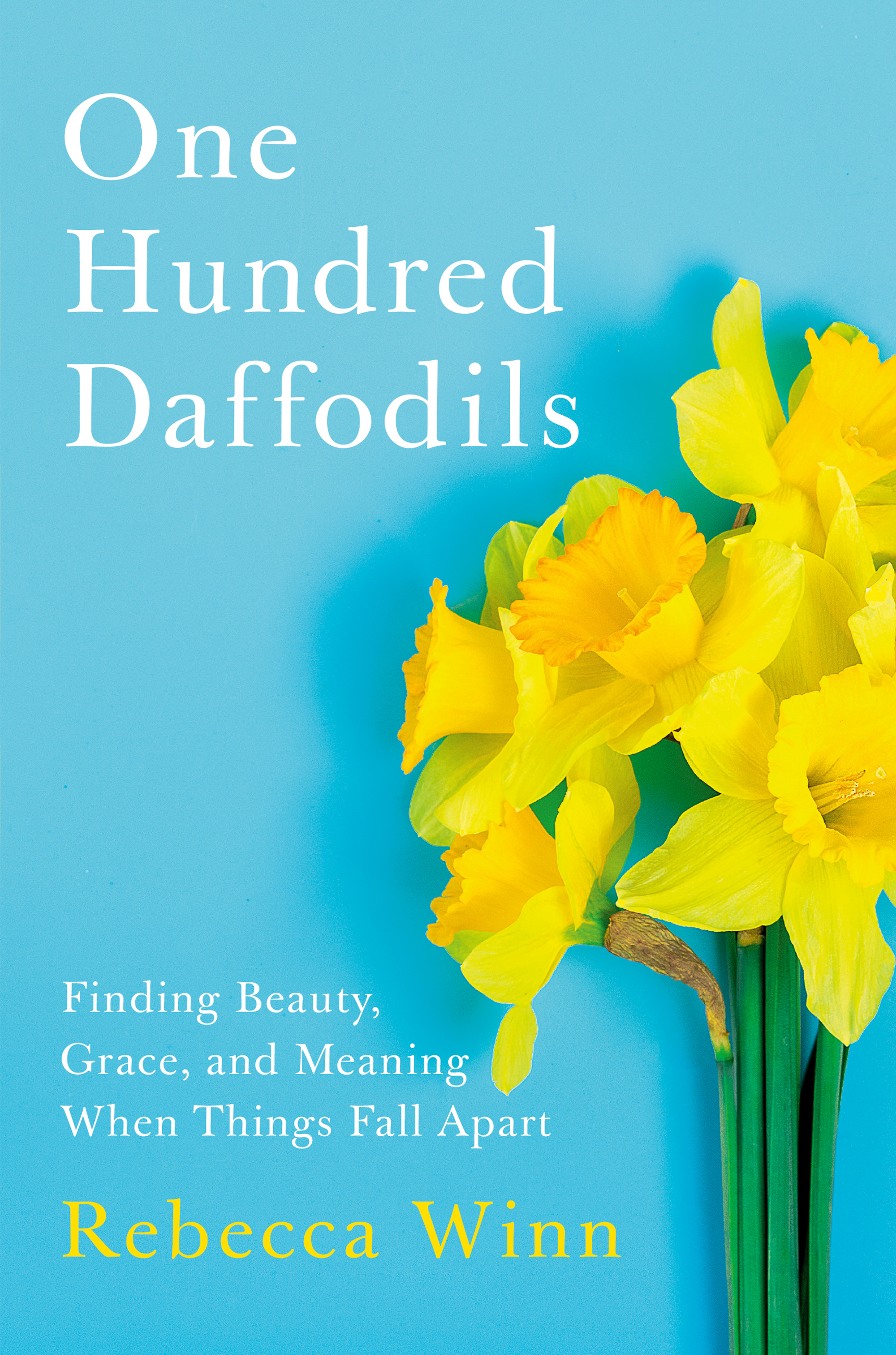 Cover image for One Hundred Daffodils [electronic resource] : Finding Beauty, Grace, and Meaning When Things Fall Apart