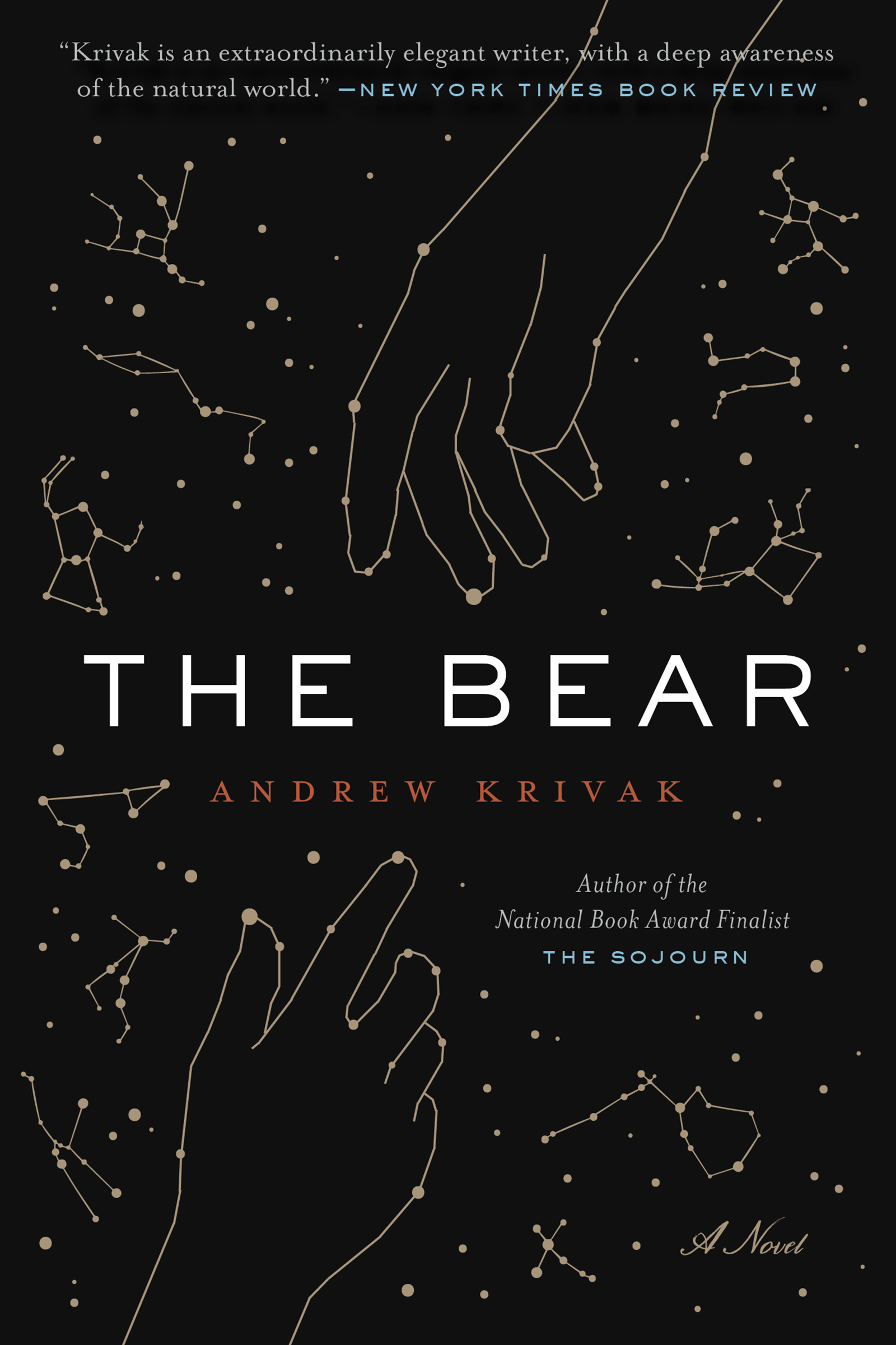 The Bear [electronic resource]
