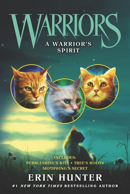Warriors A warrior's spirit cover image