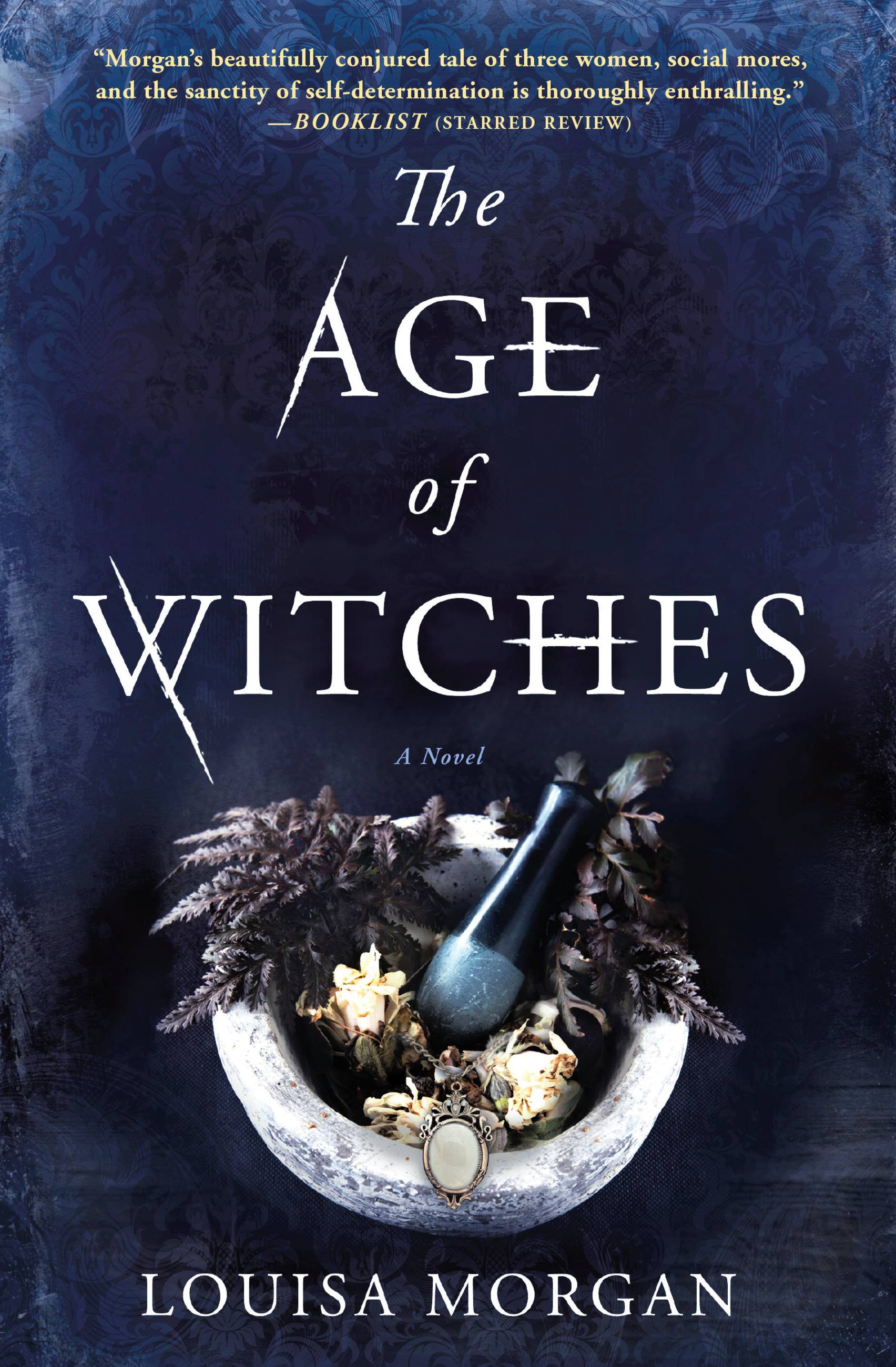 The Age of Witches A Novel