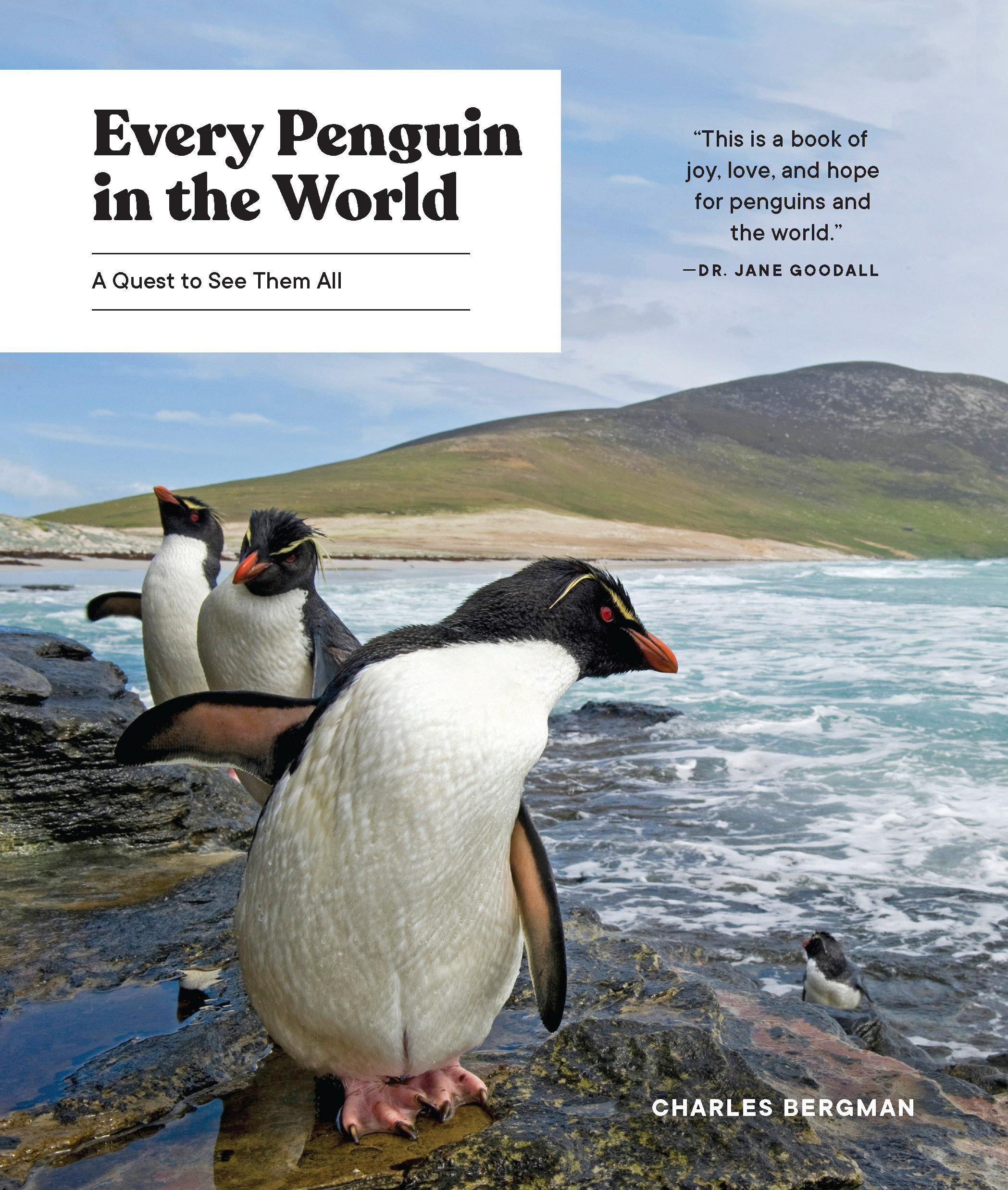 Every Penguin in the World [electronic resource] : A Quest to See Them All