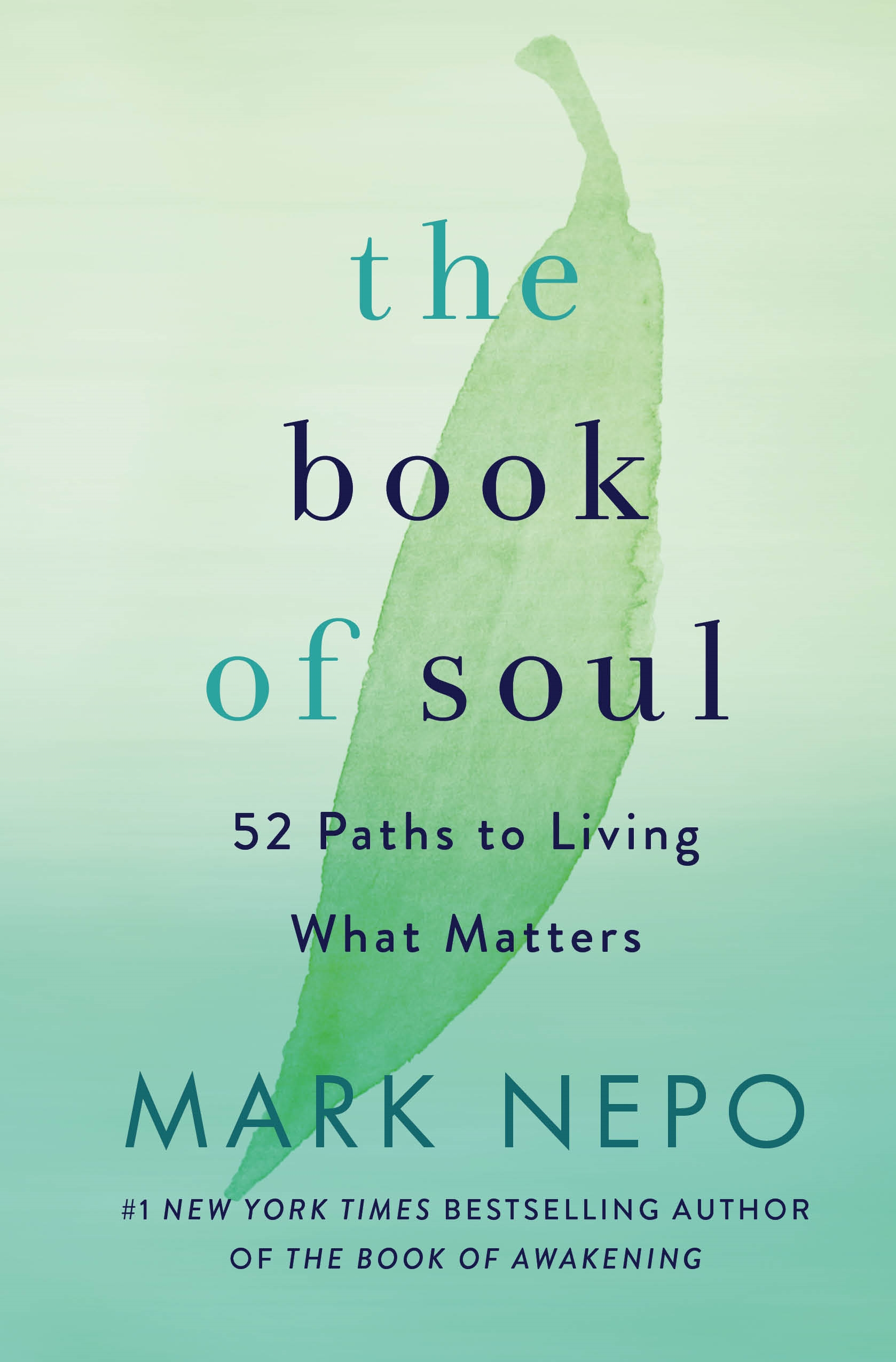 Cover Image of The Book of Soul