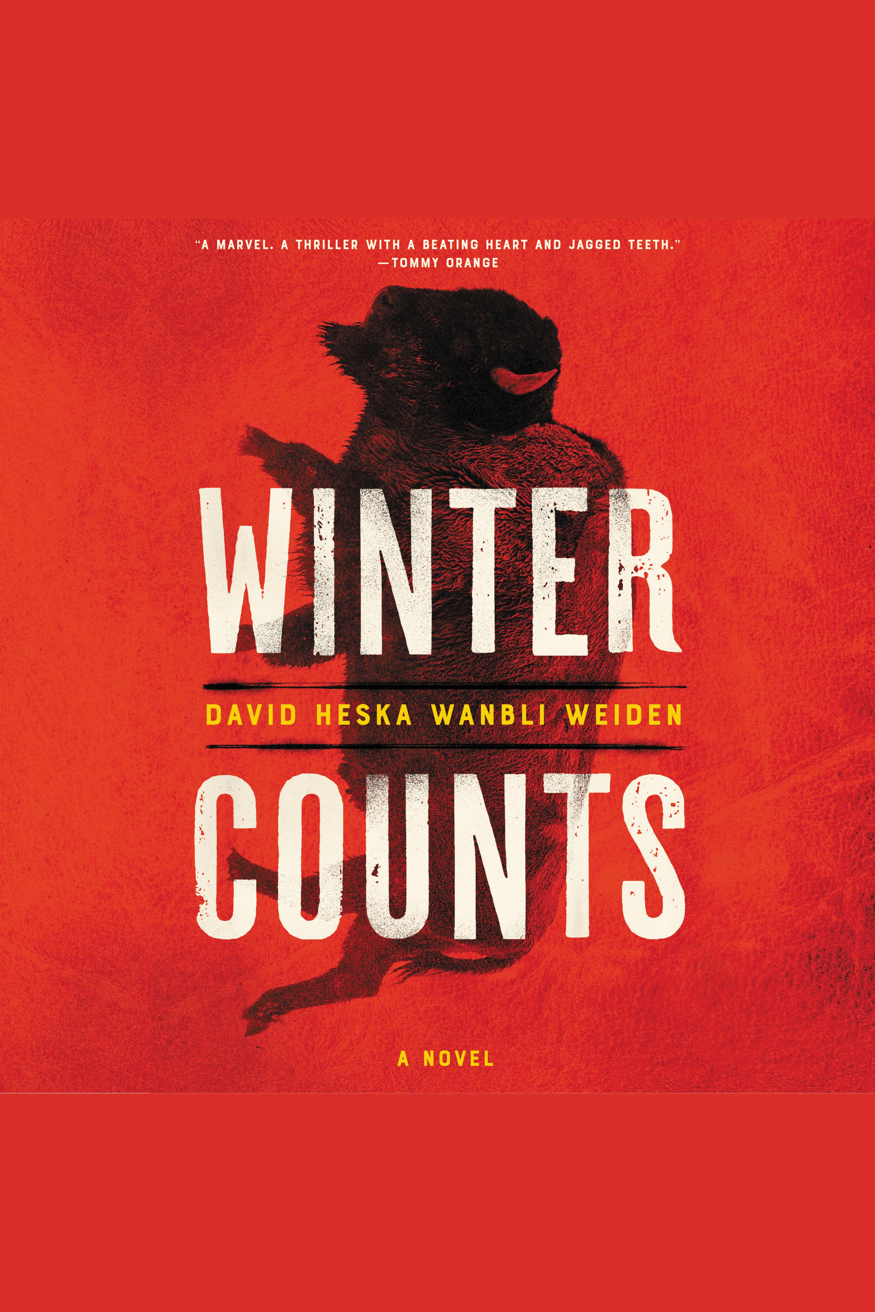Winter Counts A Novel
