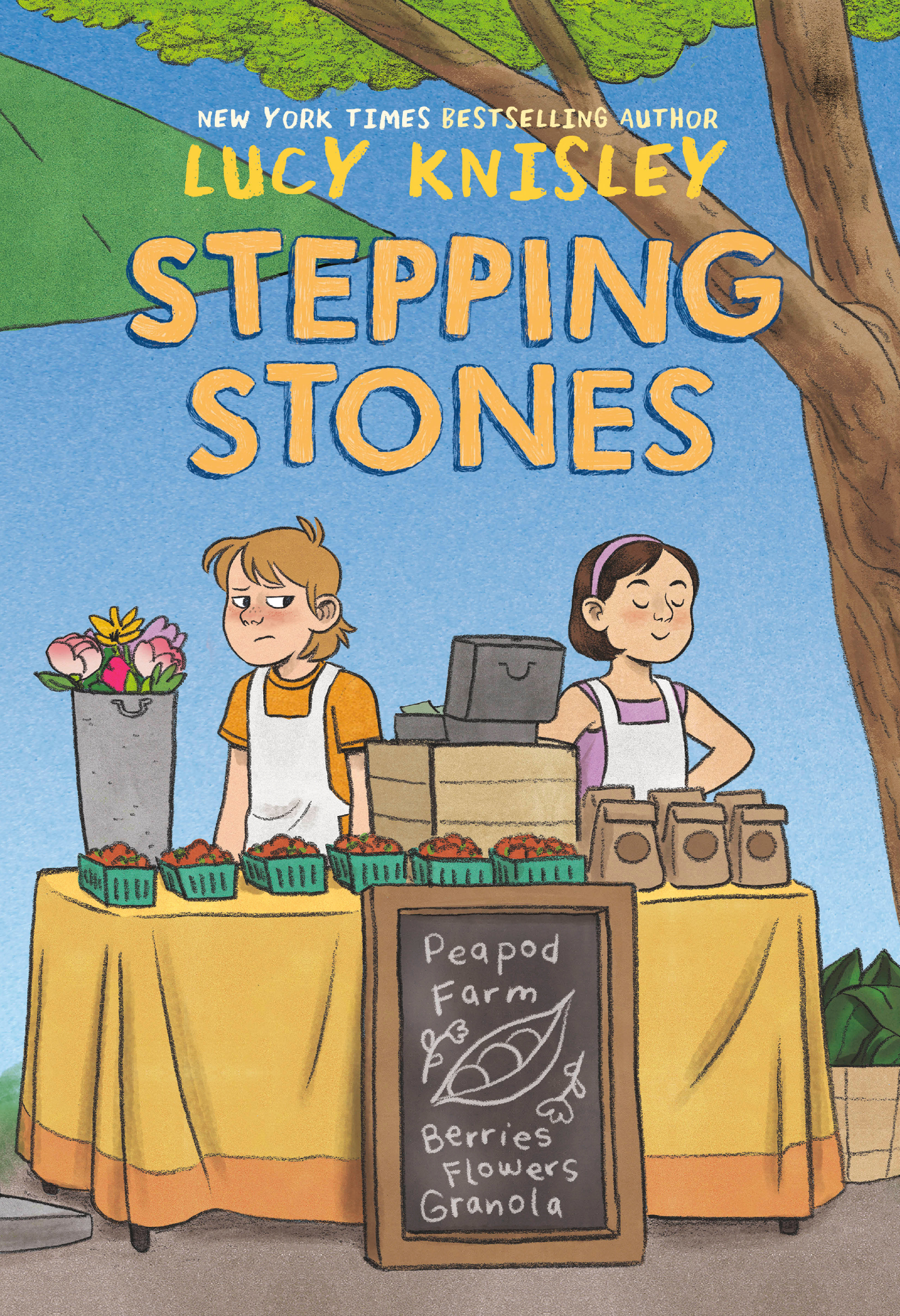 Stepping Stones [electronic resource (downloadable eBook)]