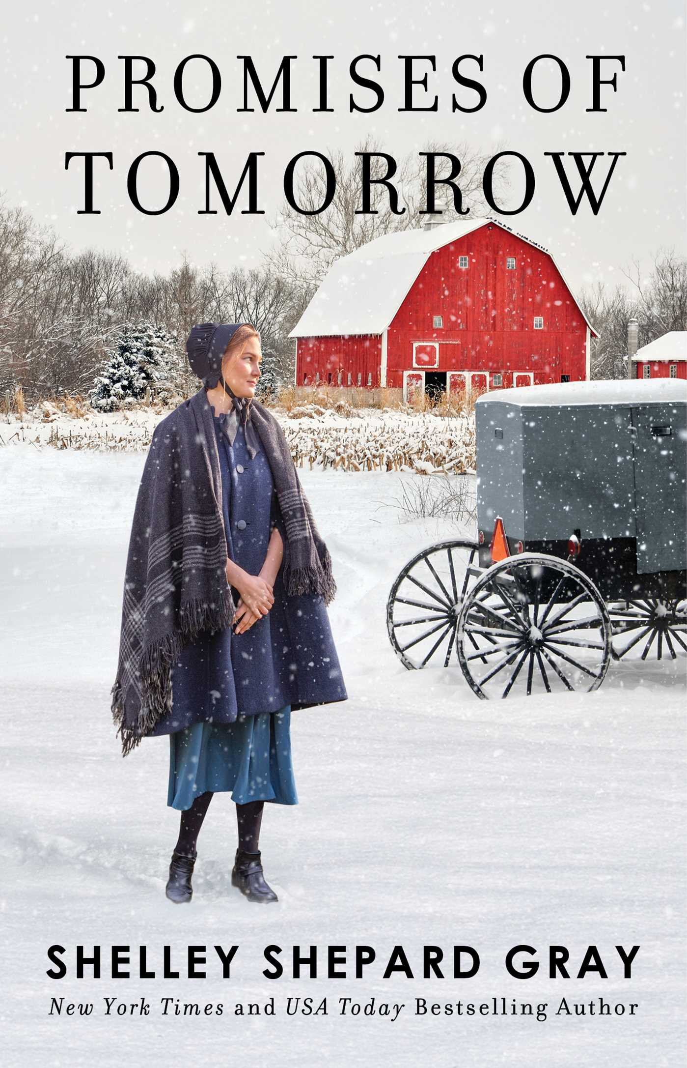 Cover Image of Promises of Tomorrow