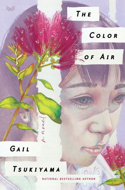 Cover Image of The Color of Air