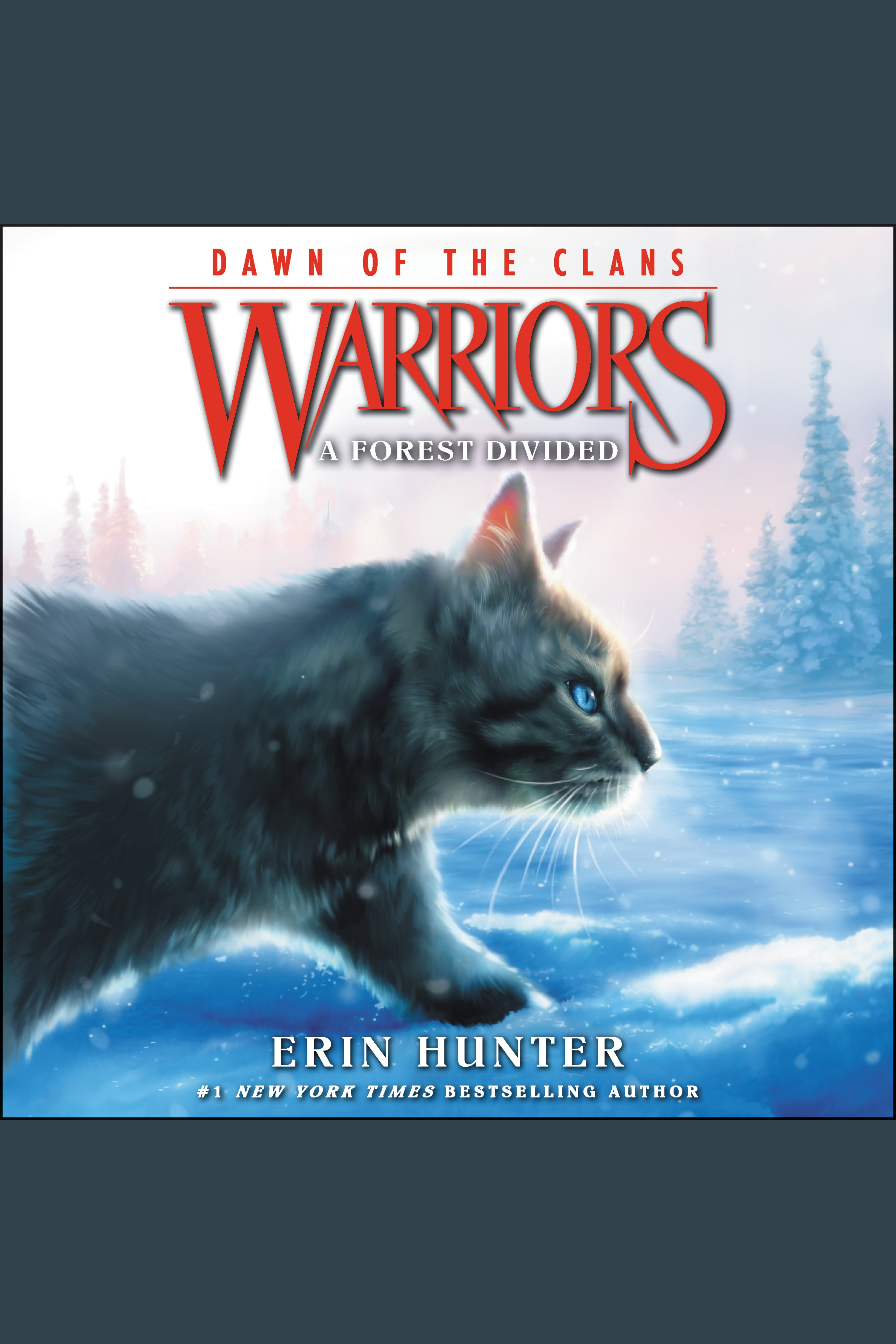 A Forest Divided Warriors: Dawn of the Clans, Book 5