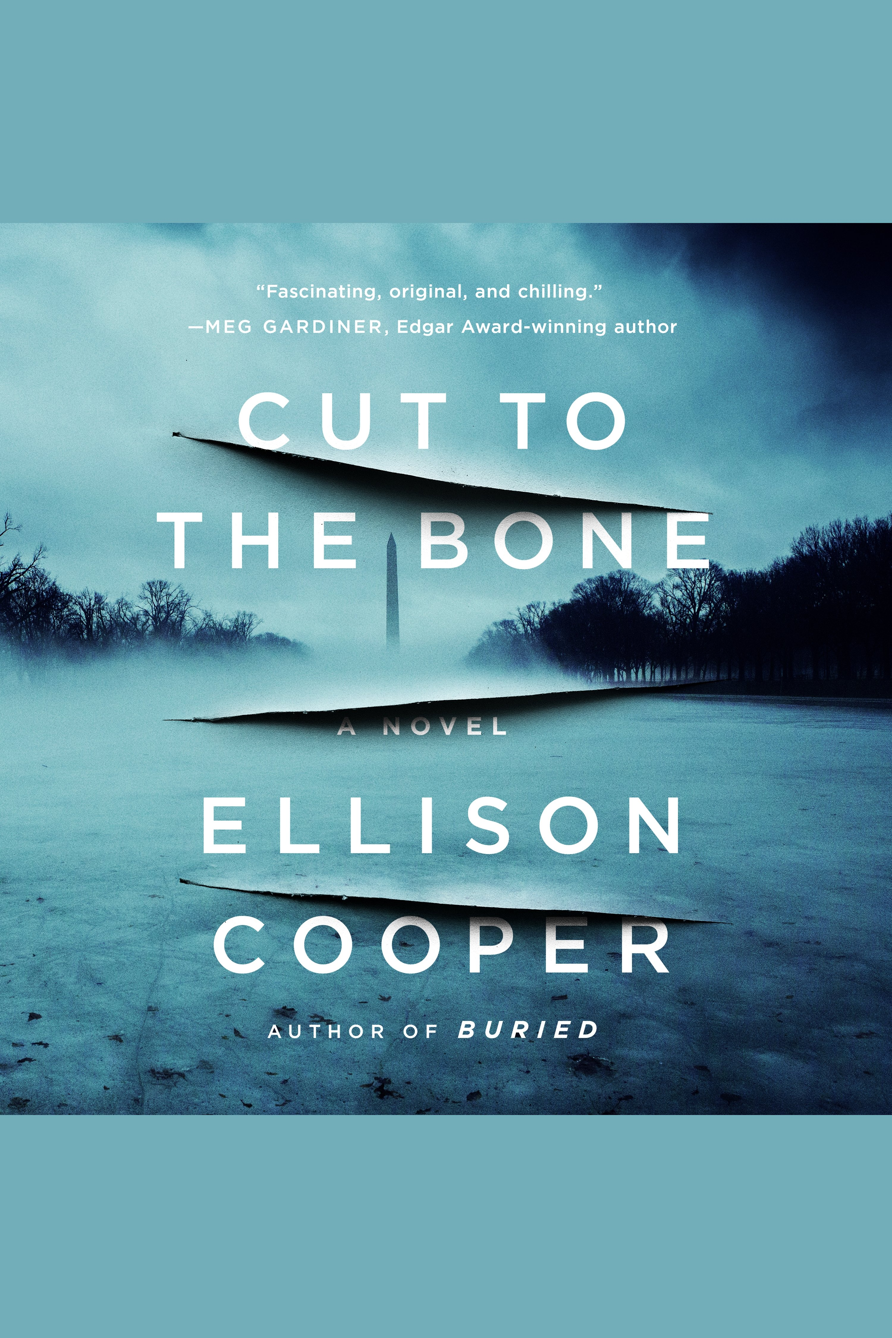 Cover Image of Cut to the Bone