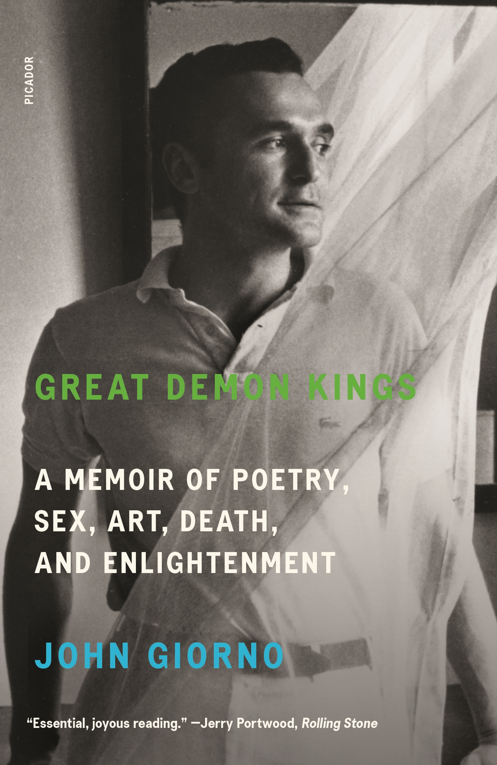 Great Demon Kings A Memoir of Poetry, Sex, Art, Death, and Enlightenment