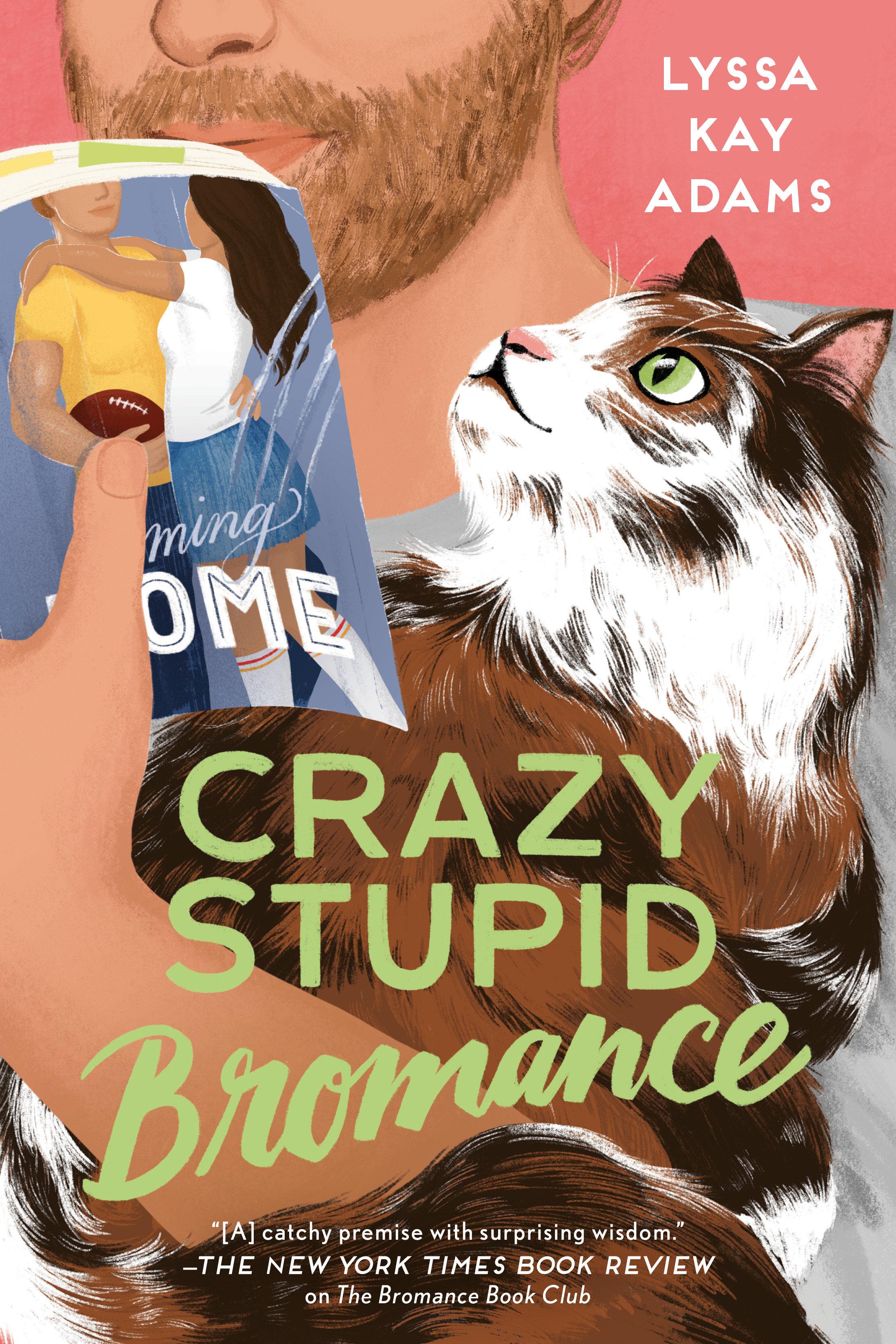 Crazy Stupid Bromance [electronic resource]