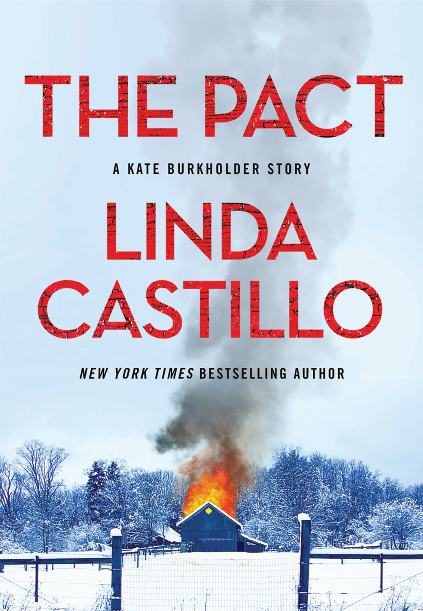 The Pact A Kate Burkholder Short Mystery cover image