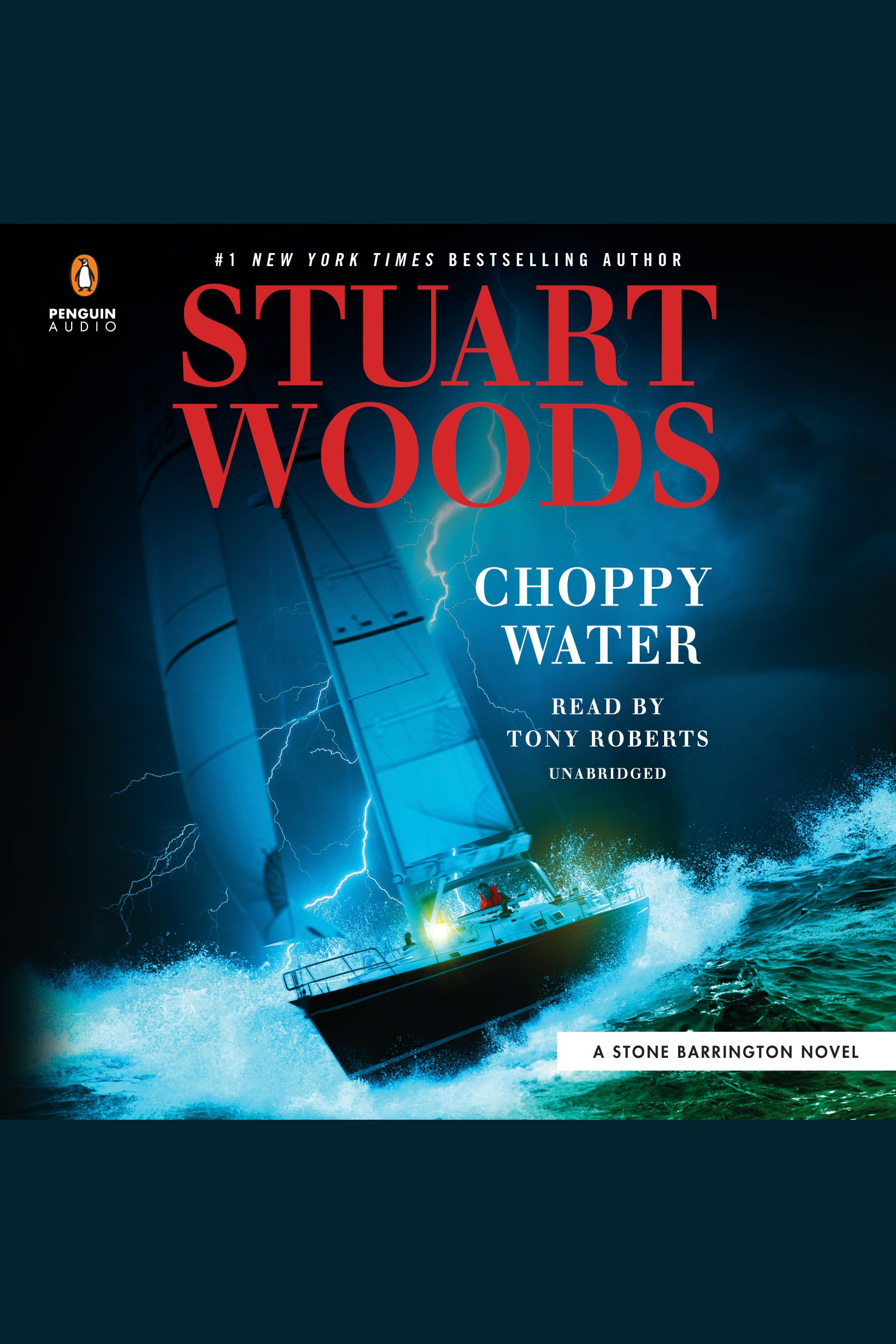 Choppy Water [electronic resource (downloadable audiobook)]