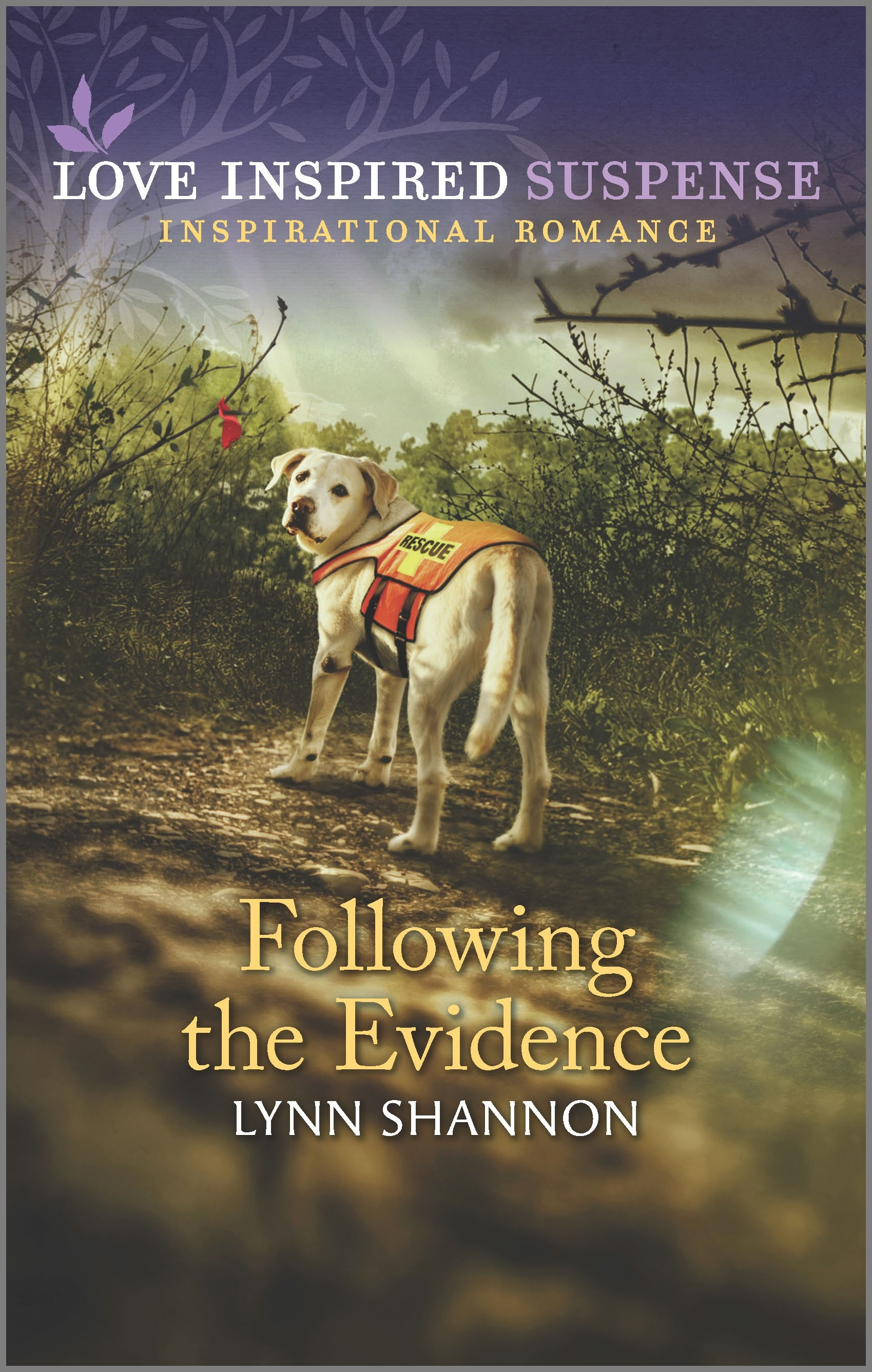 Following the Evidence [electronic resource]