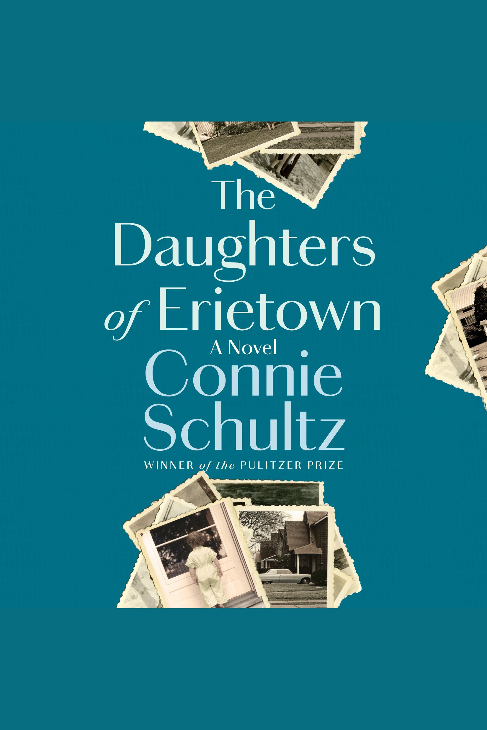 Daughters of Erietown, The A Novel