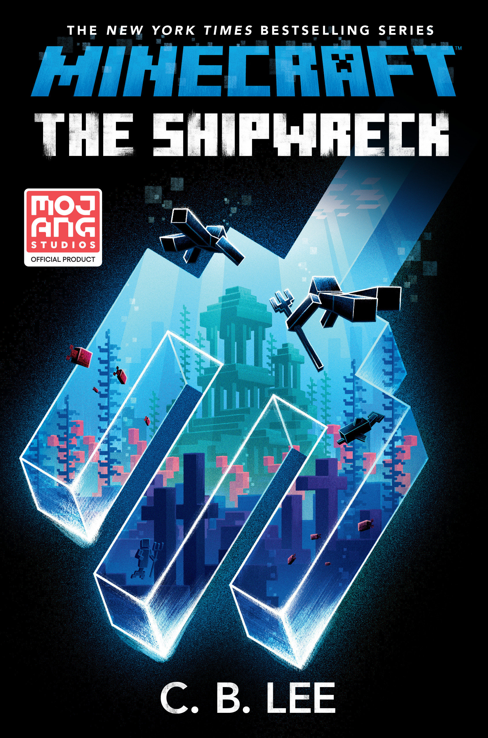 Cover Image of Minecraft: The Shipwreck